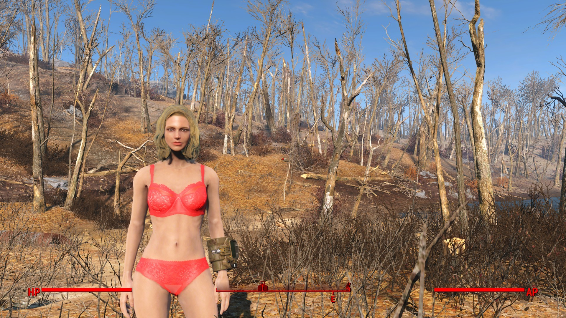 … Fallout 4 – Sexy Lingerie by RobinOlsen2011