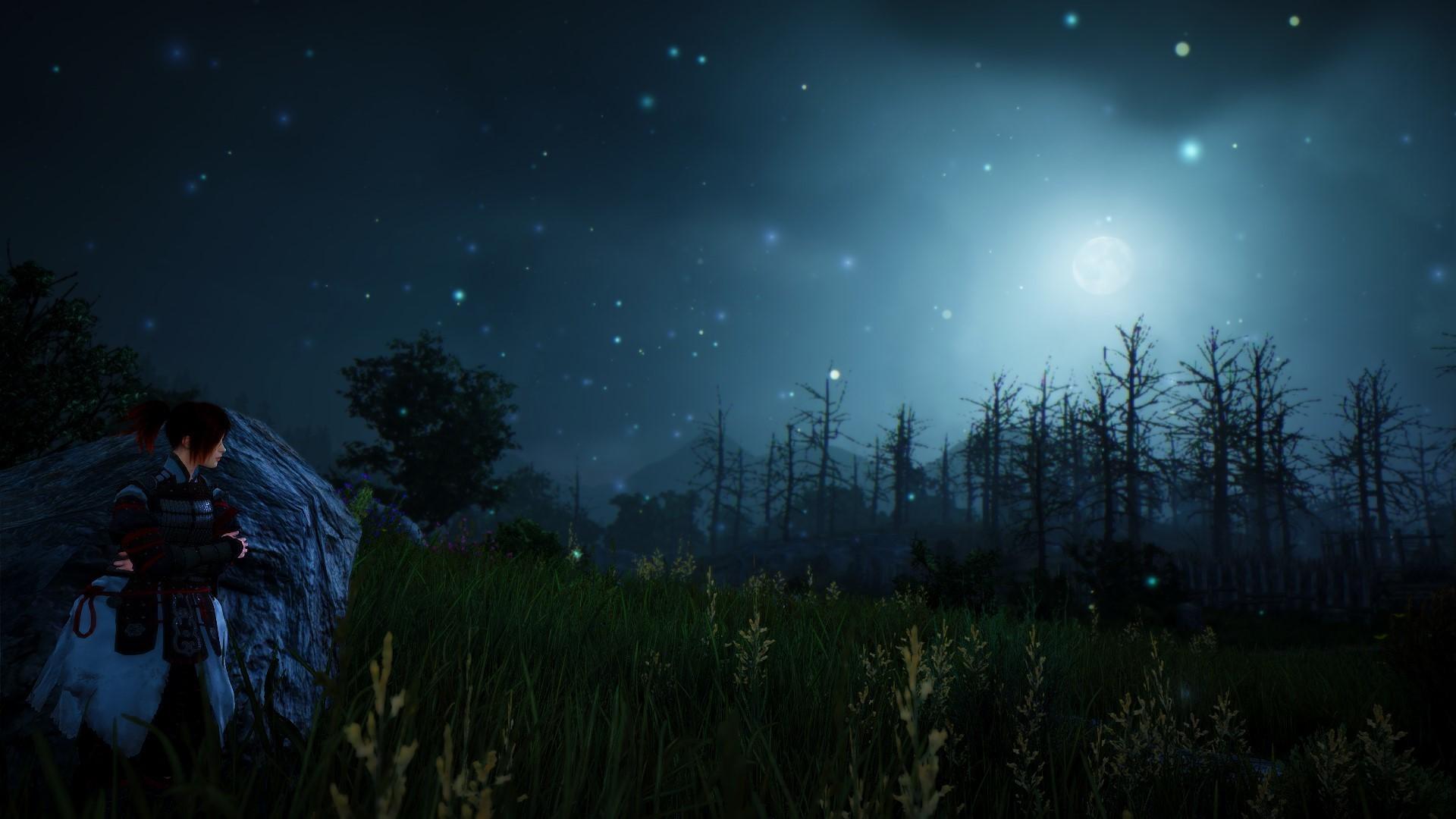 """""""Black Desert Online"""" at night."""