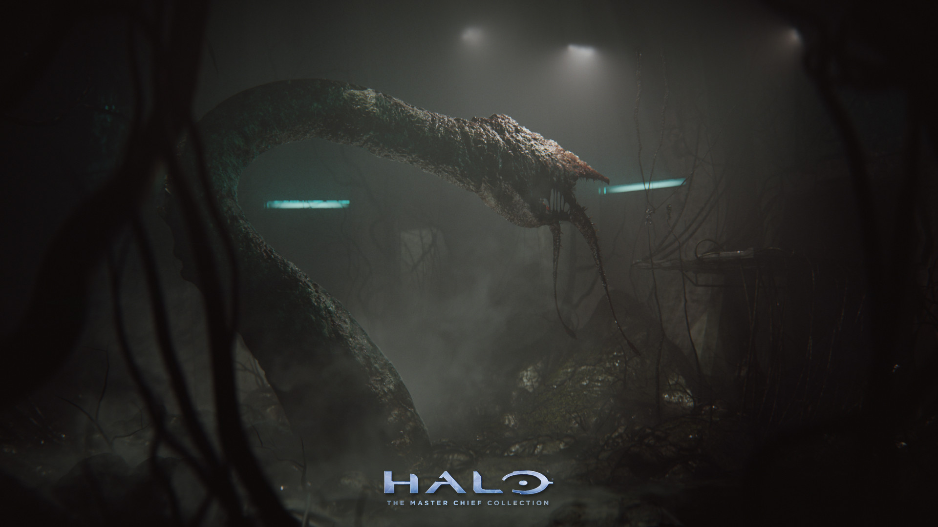 Halo Ring Wallpaper
