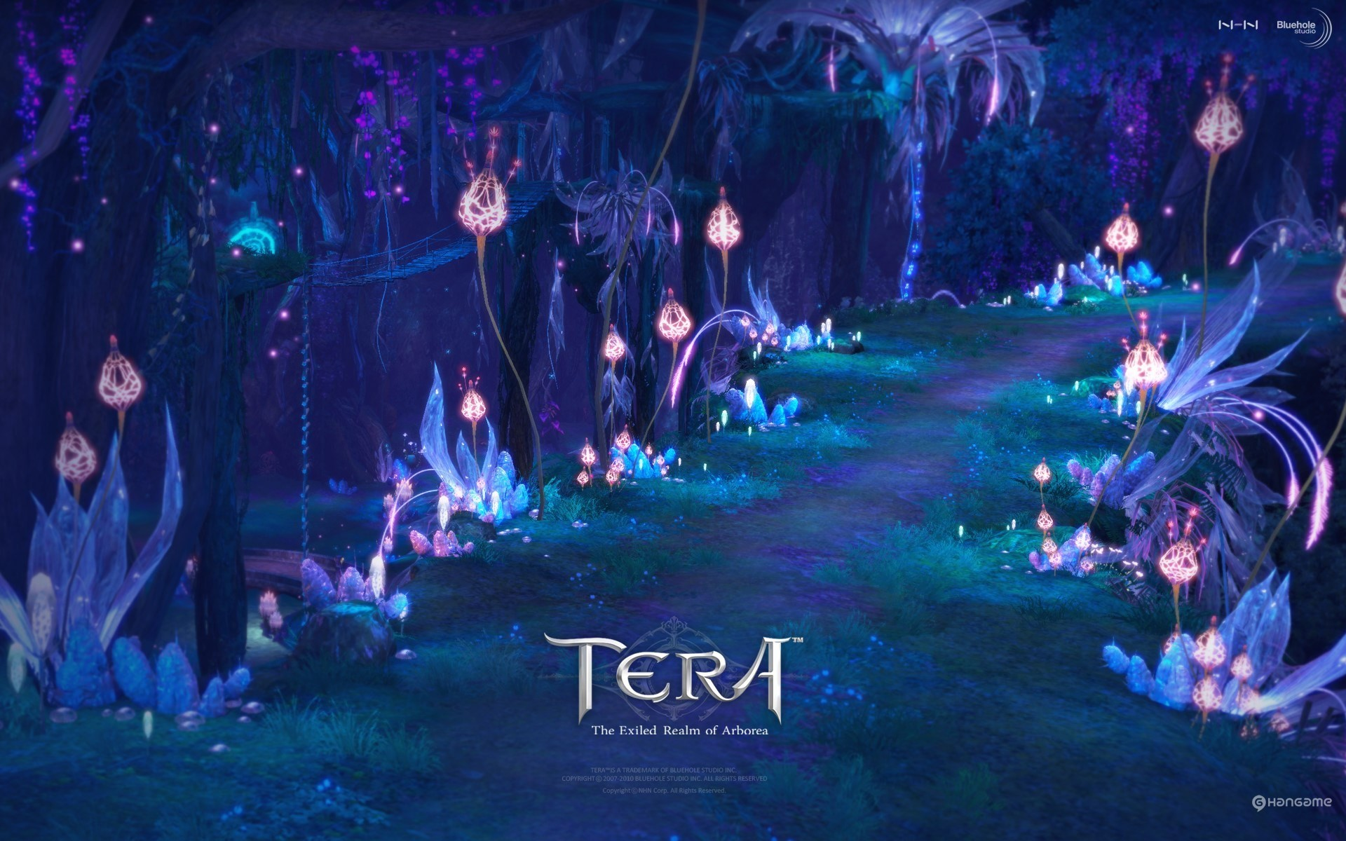 1920 x 1200px tera online wallpaper for desktop background by Haywood  Edwards