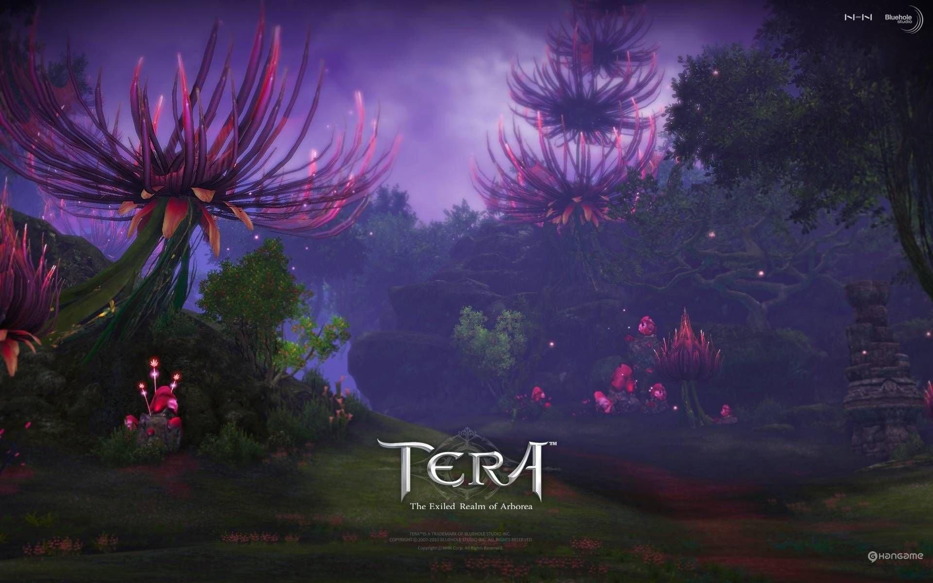 Tera Online HD