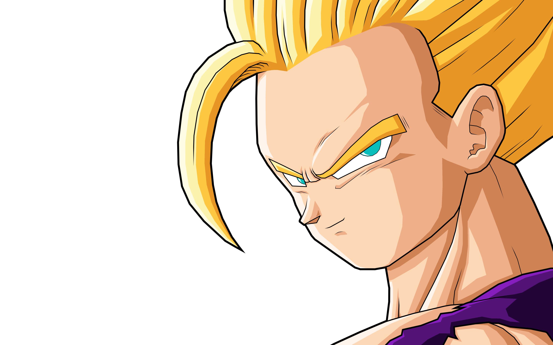 Anime – Dragon Ball Z Gohan (Dragon Ball) Wallpaper