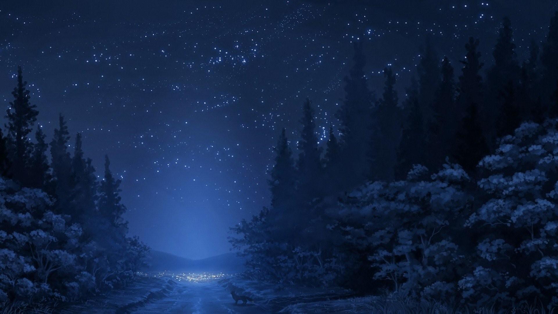 forest snow mountain road winter tree sky night star fox