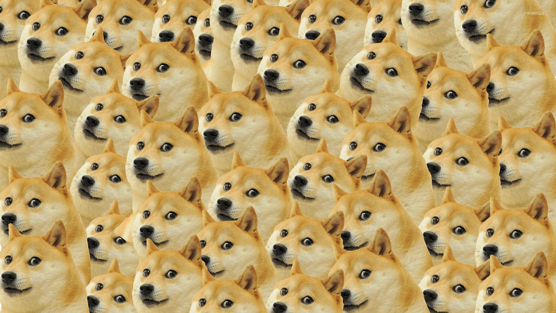 Doge pattern wallpaper – Meme wallpapers – #27481