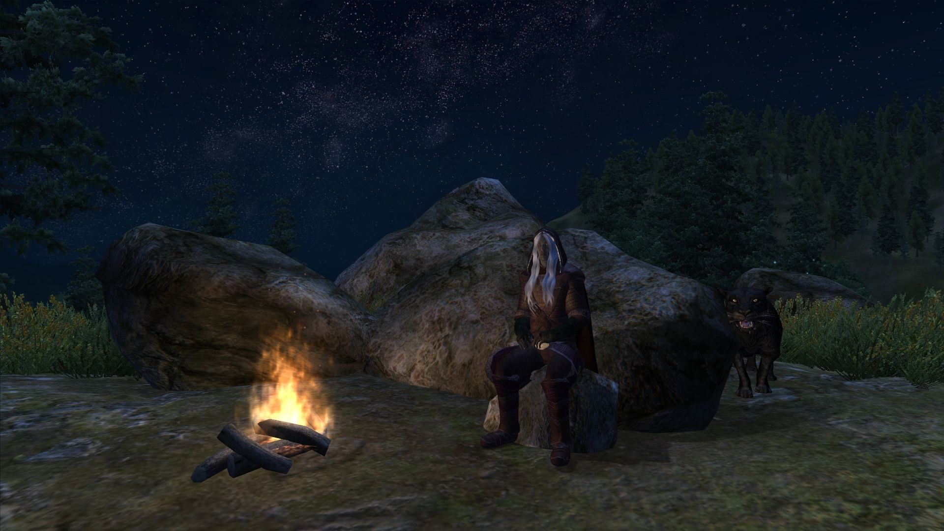 A night out in the wilderness with Drizzt and Guenhywar