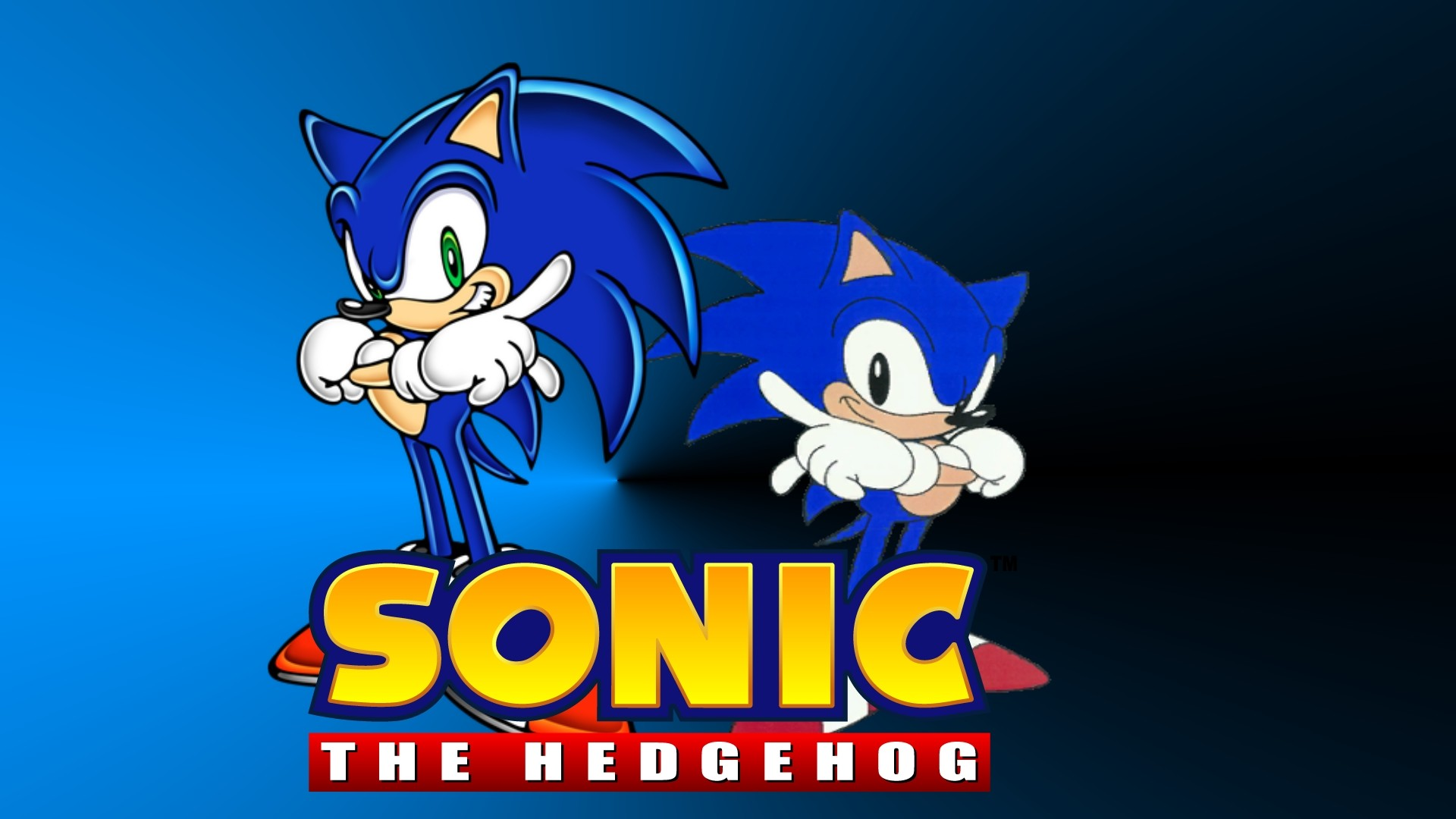 Video Game Sonic The Hedgehog.