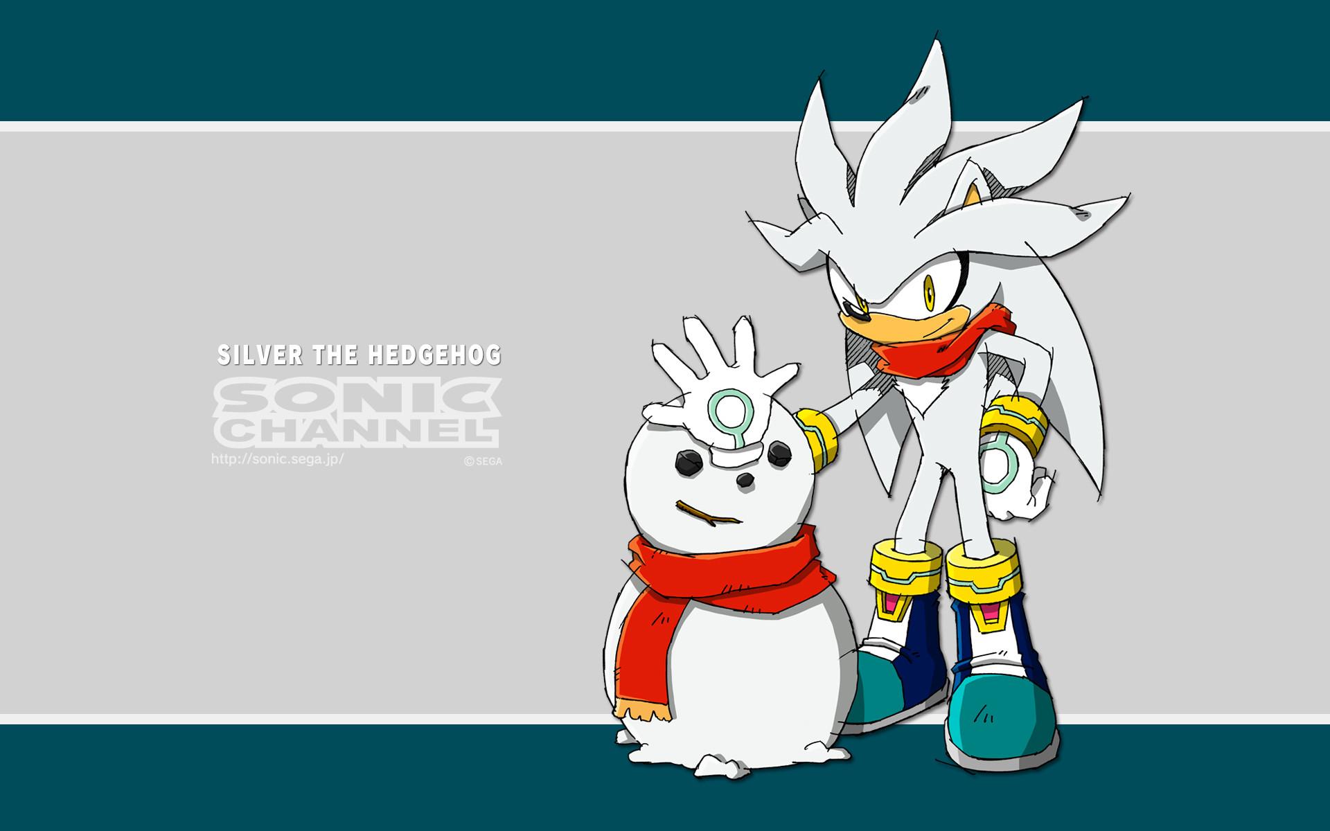 2014/01 — Silver the Hedgehog