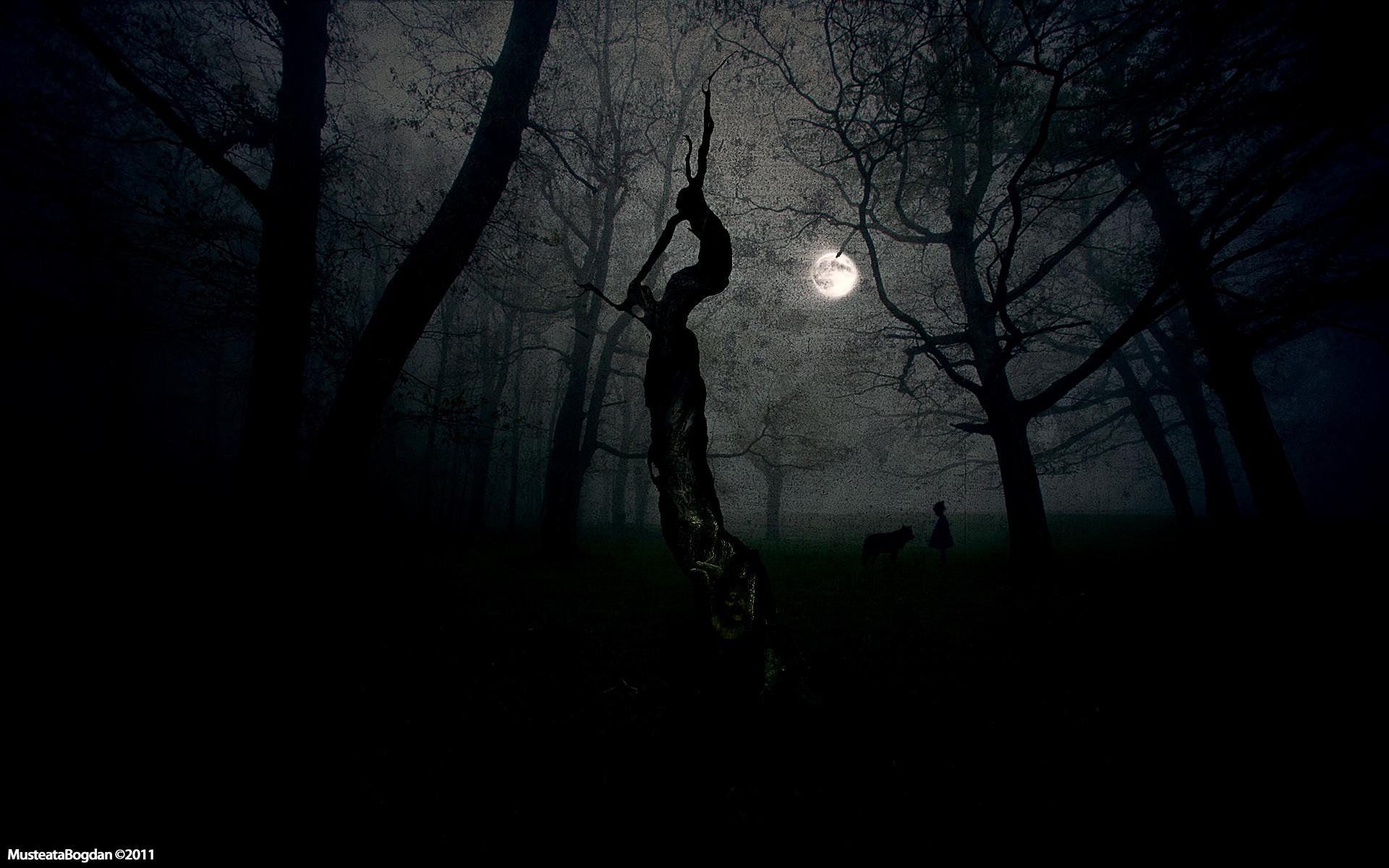 Dark scene.