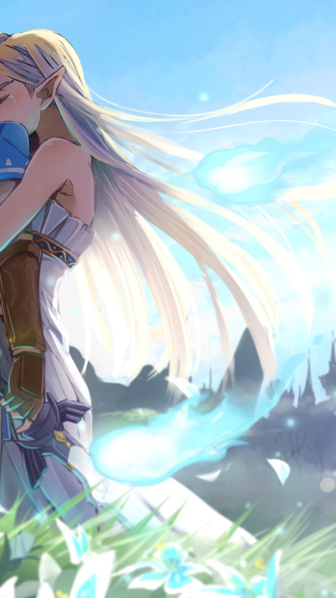 The Legend Of Zelda: Breath Of The Wild, Link, Princess Zelda, Anime