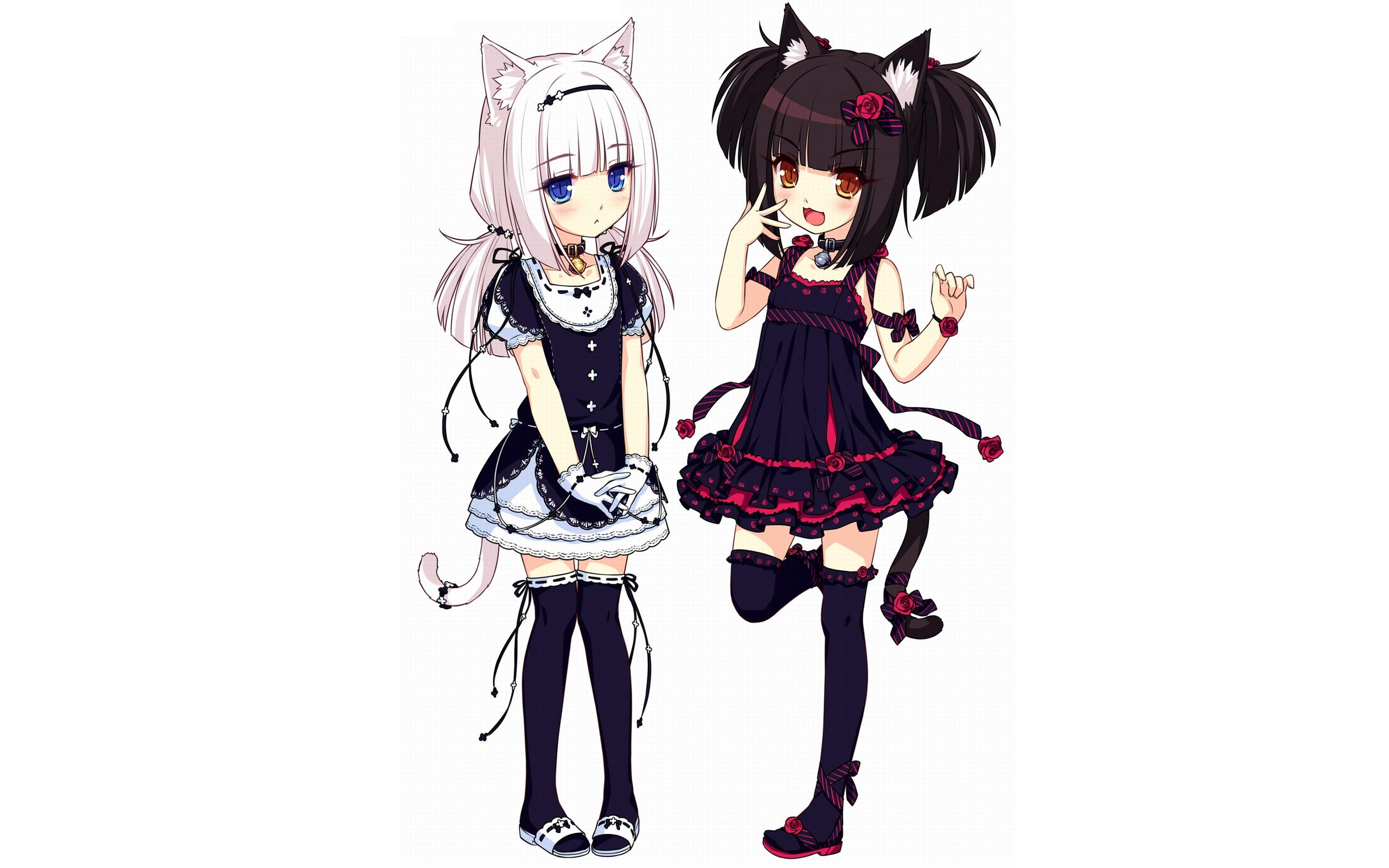 loli, anime girls, animal ears, Neko Para – wallpaper #67090 (2560x1600px)  on Wallls.com