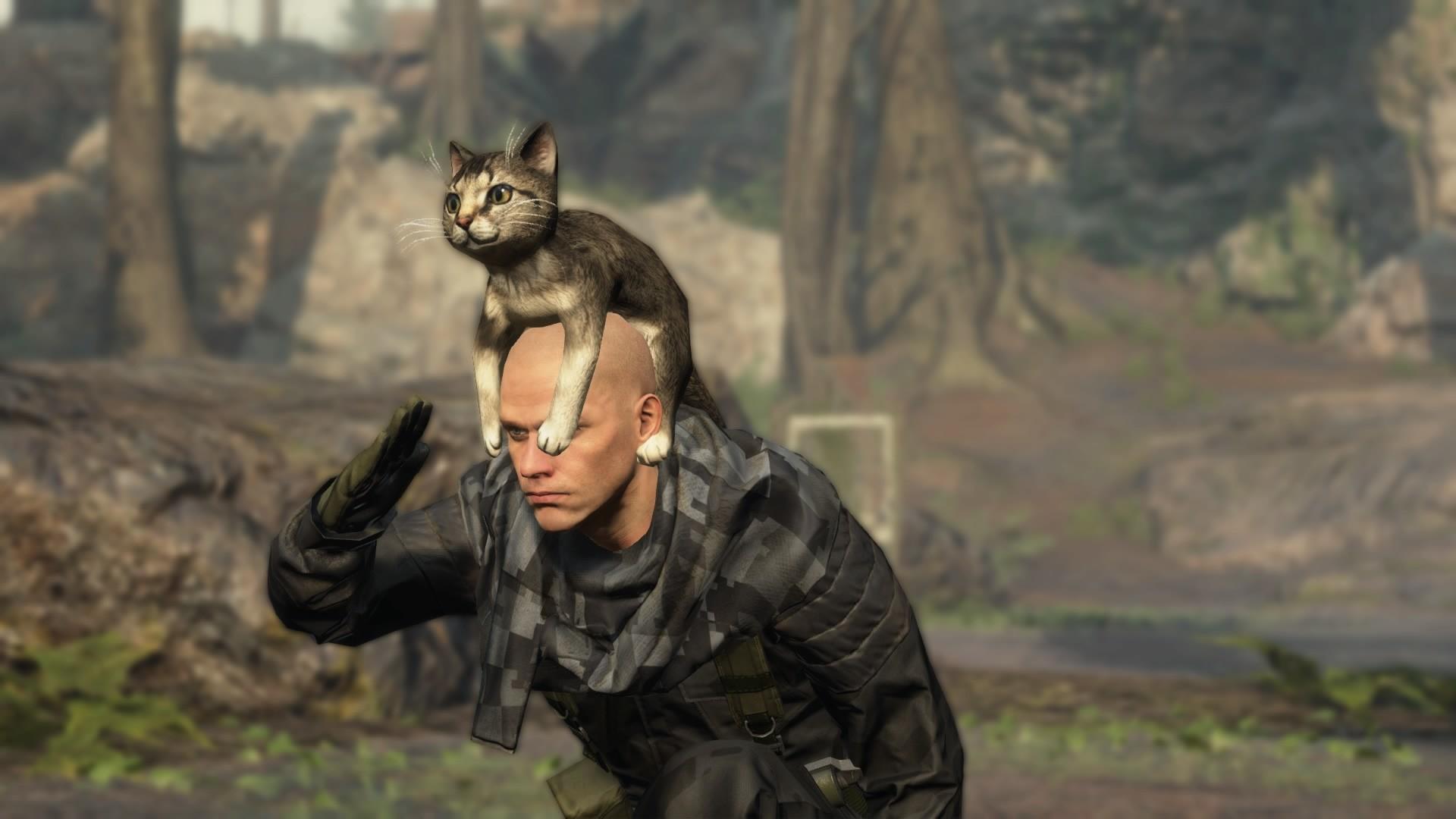 metal_gear_online_november_update_cat_hat_3 ·  metal_gear_online_november_update_cat_hat_2 ·  metal_gear_online_november_update_cat_hat_1
