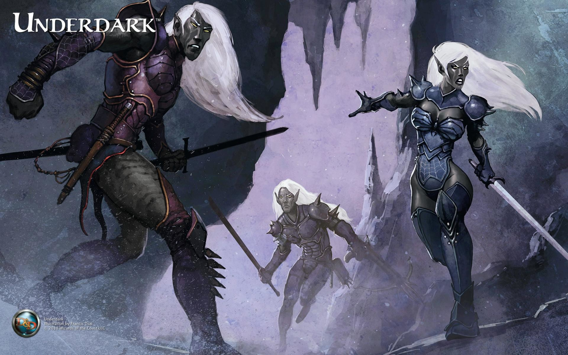 https://pic1.win4000.com/wallpaper/0/510a035a5c6f6.jpg   Dungeons & Dragons    Pinterest   Dark elf, Fantasy characters and RPG