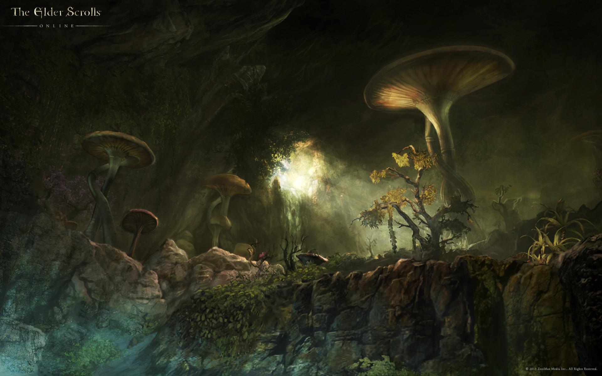 The Elder Scrolls Online Wallpaper Concept Art – Concept Art World