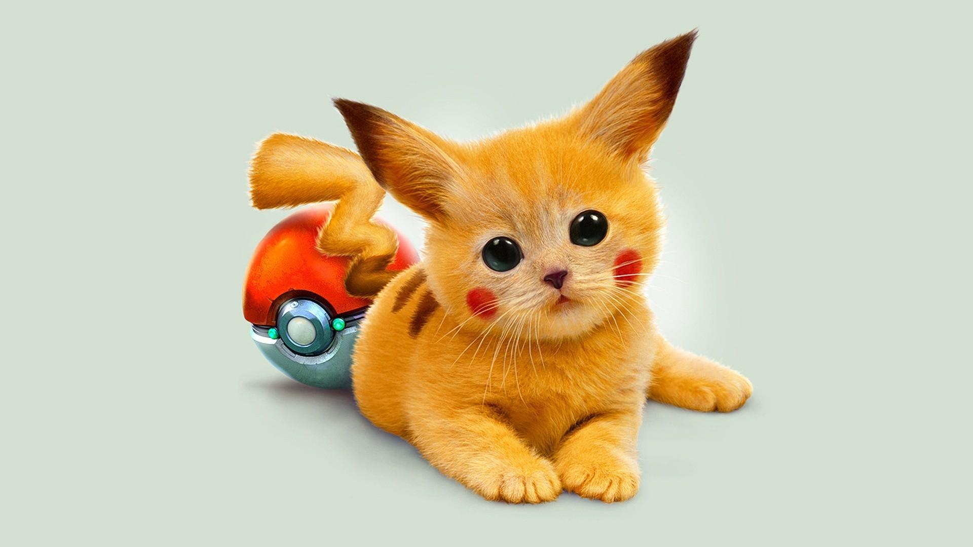 Fluffy Pokemon Pikachu