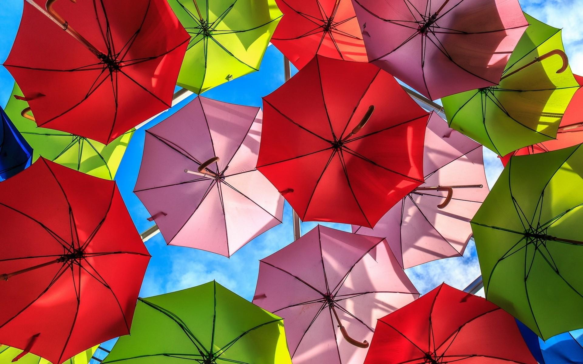 Umbrella Wallpaper 8256