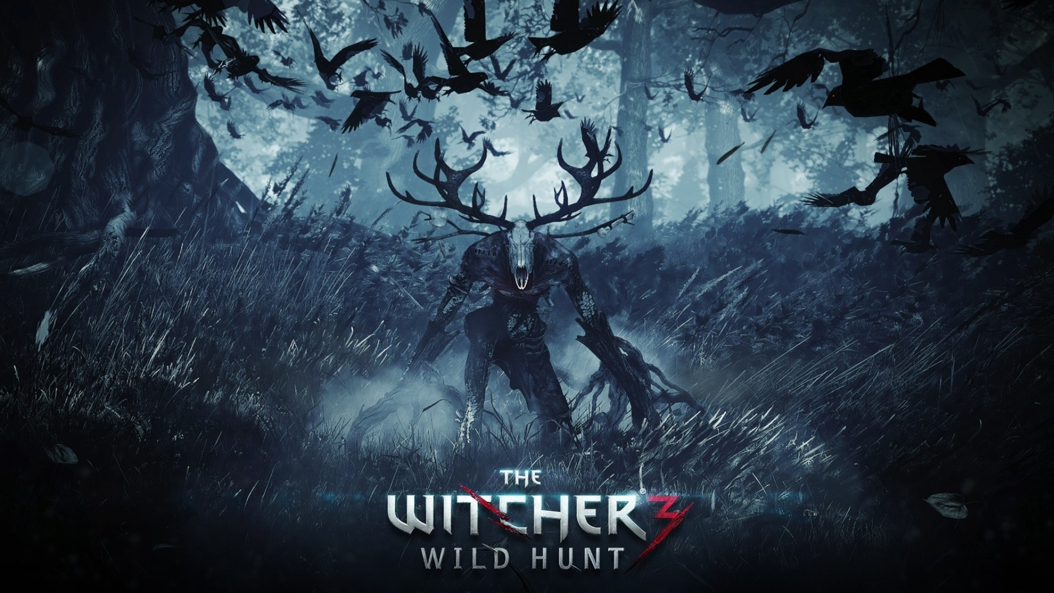 Preview wallpaper the witcher 3 wild hunt, final part, pc, playstation 4,