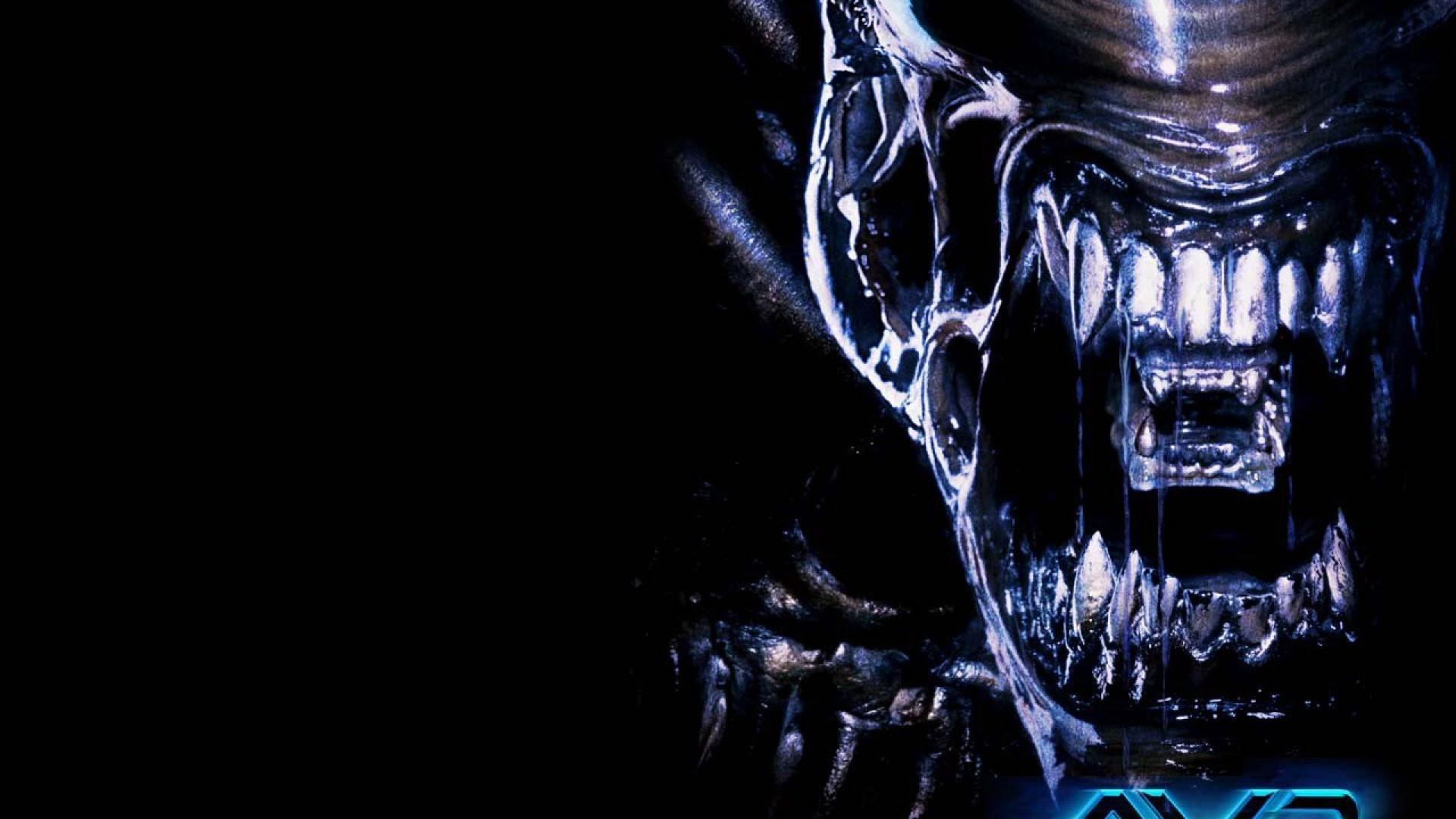 Alien vs predator alien wallpaper hd.