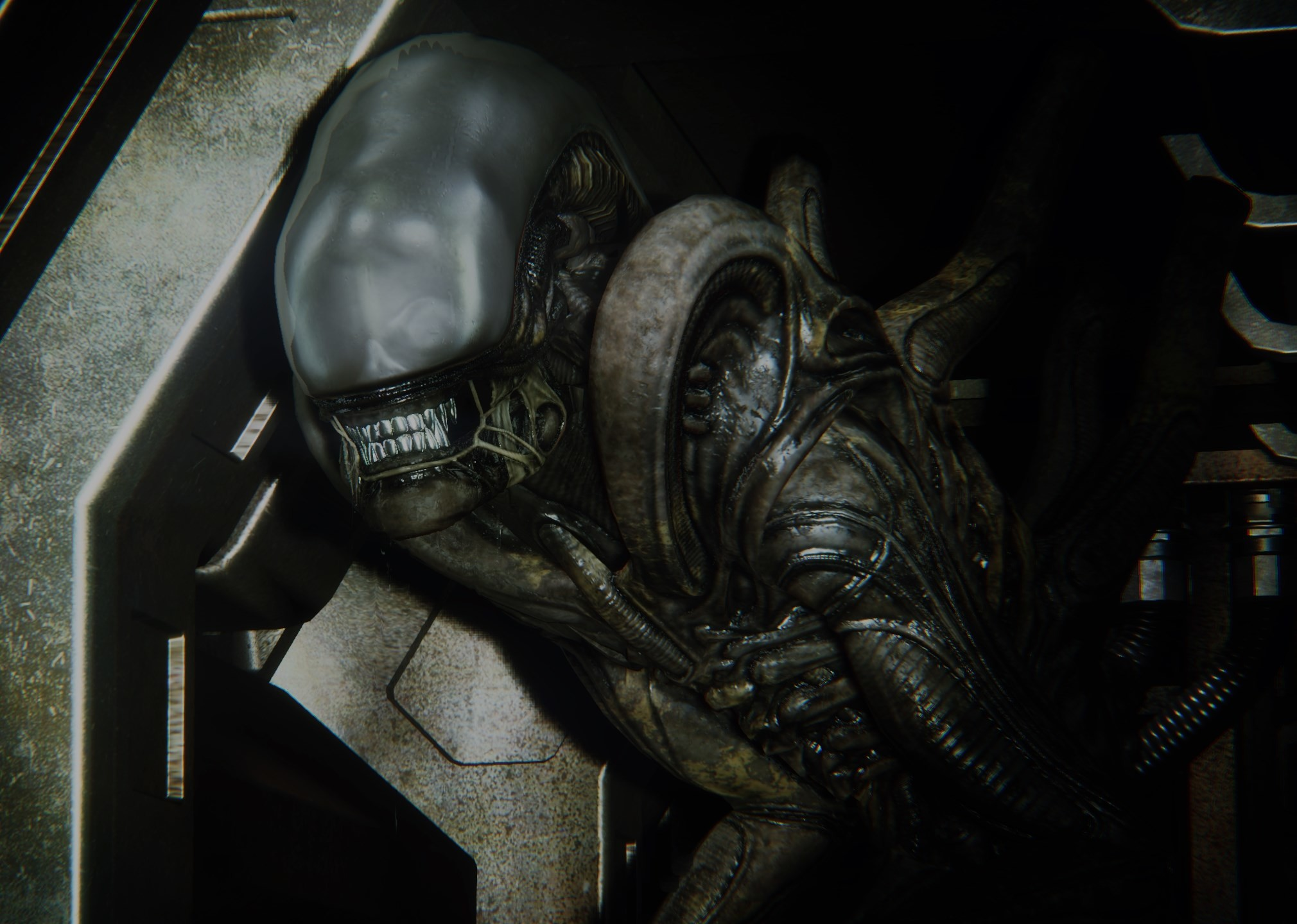 alien isolation picture: Full HD Pictures by Angelina Butler (2017-03-06