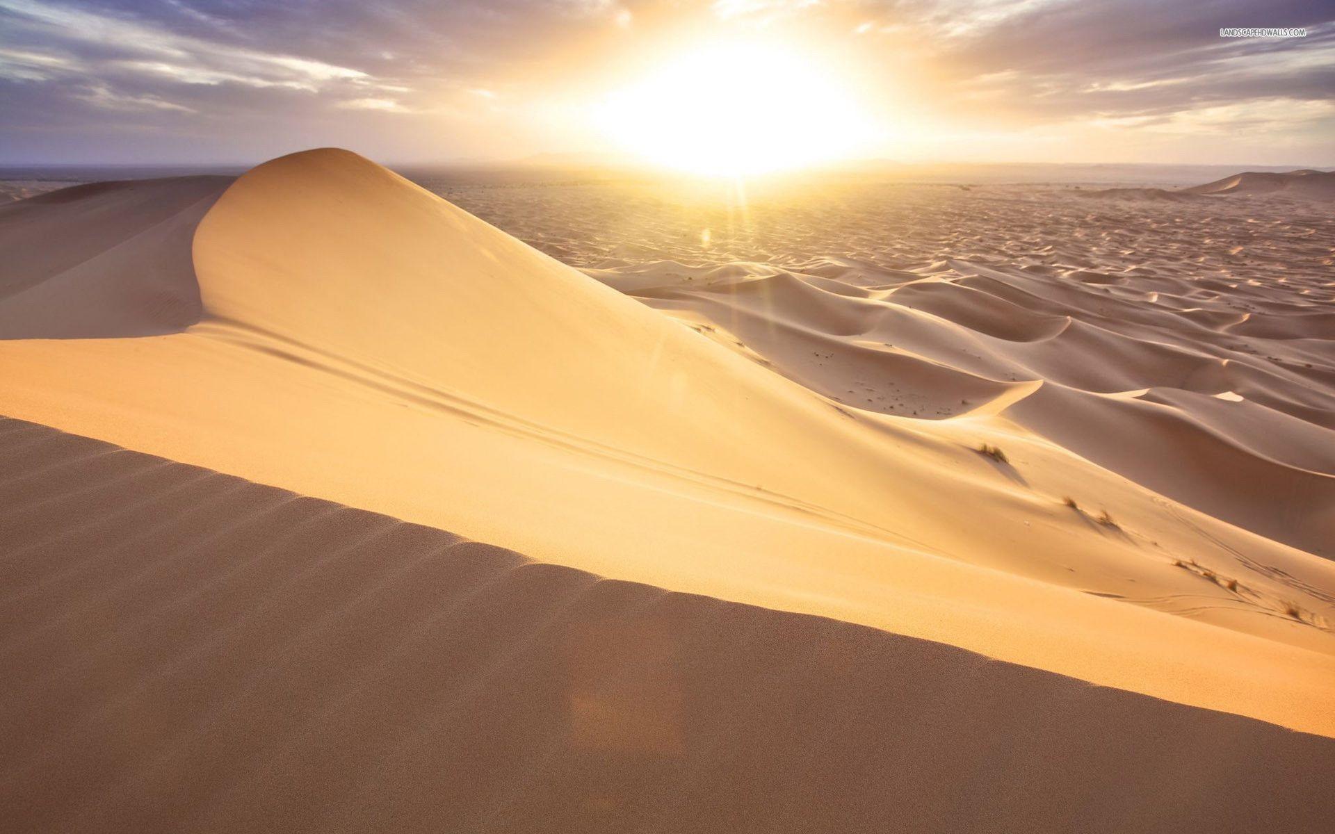 Dune Wallpapers (26 Wallpapers)