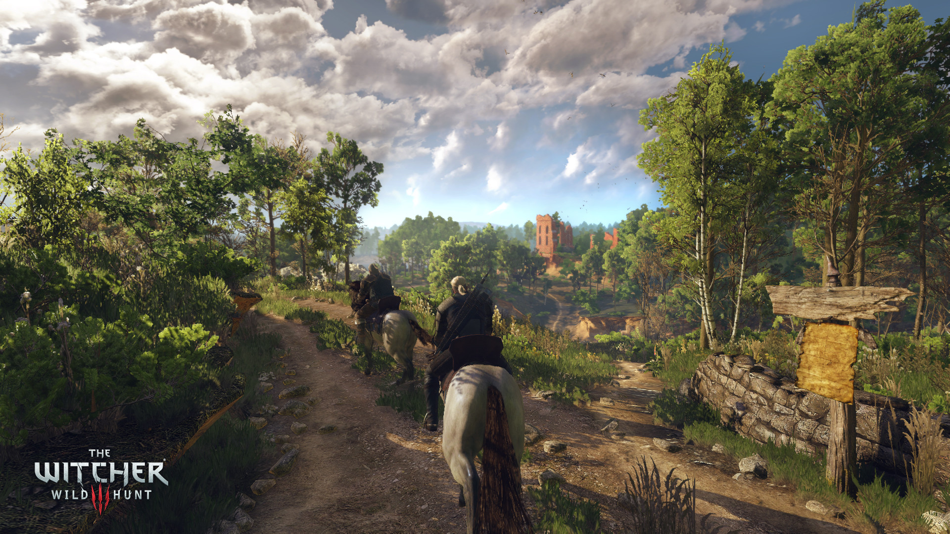 The Witcher 3: Wild Hunt Full HD Wallpaper