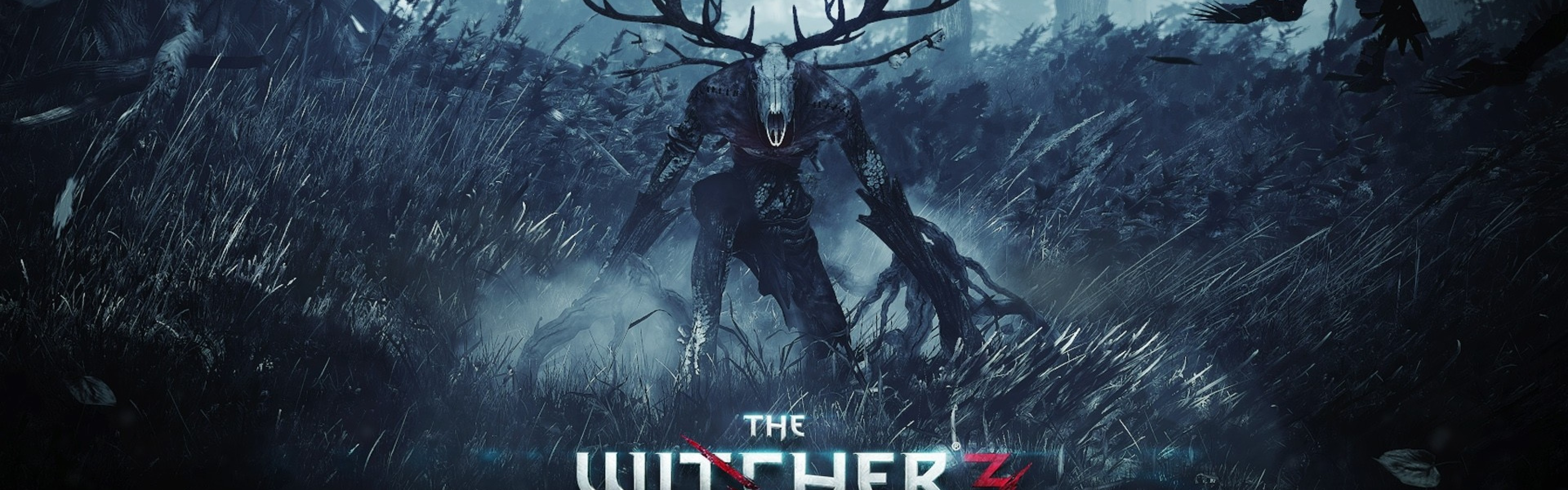 Wallpaper the witcher 3 wild hunt, final part, pc, playstation 4,