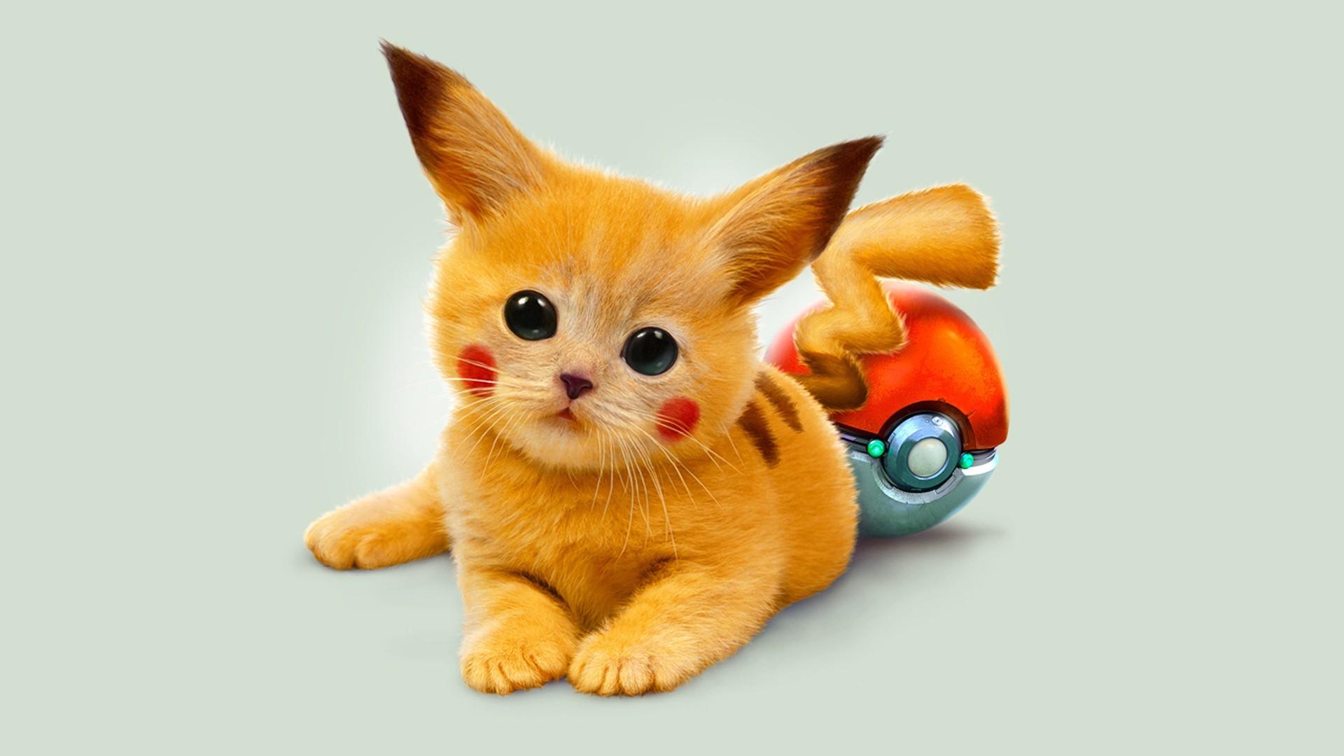 wallpaper pokemon · cats · Pikachu · Google · Pokeball