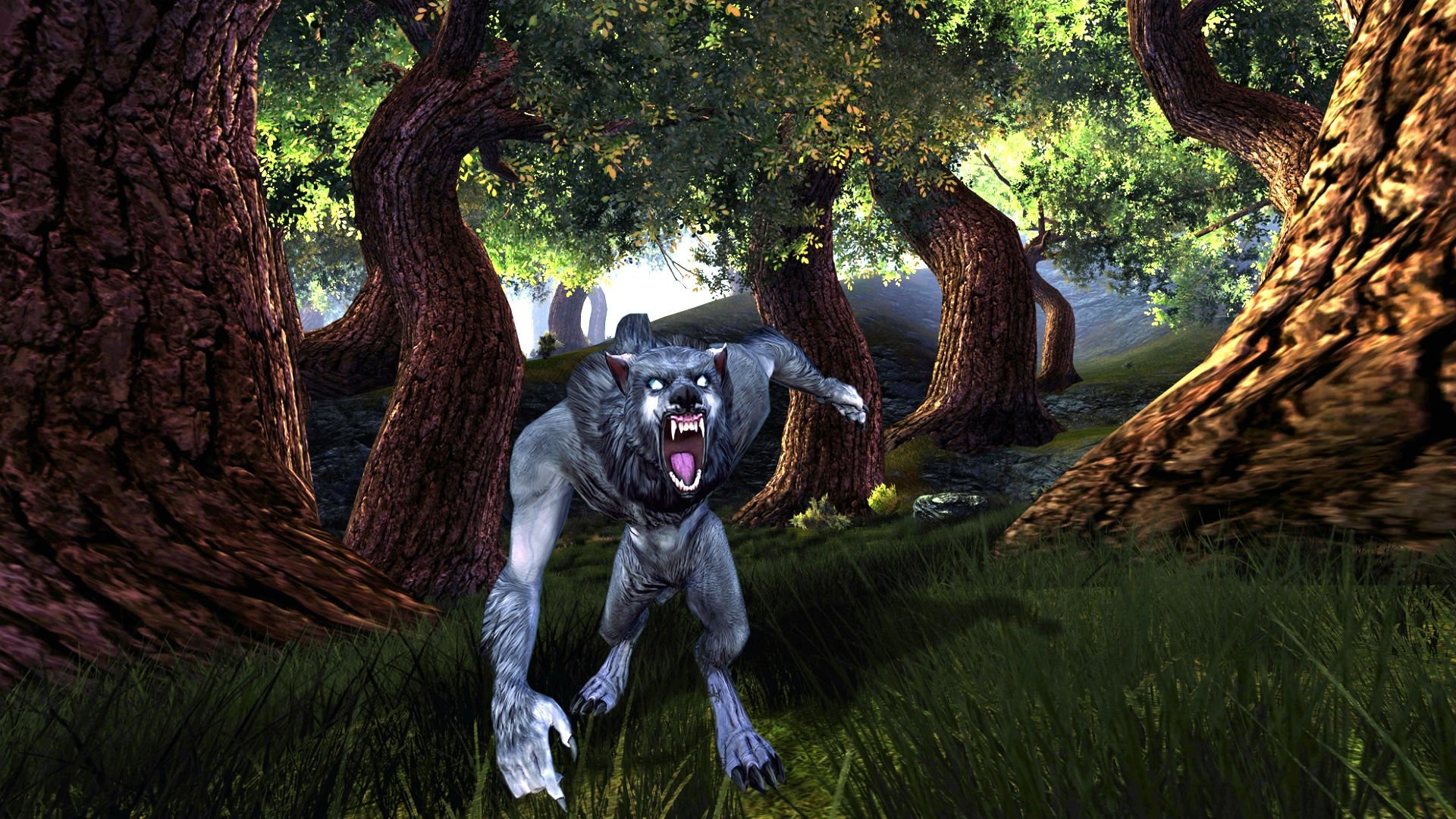 DUNGEONS DRAGONS Forgotten Realms magic rpg action adventure puzzle fantasy  monster creature werewolf wolf wolves wallpaper | | 821425 | …