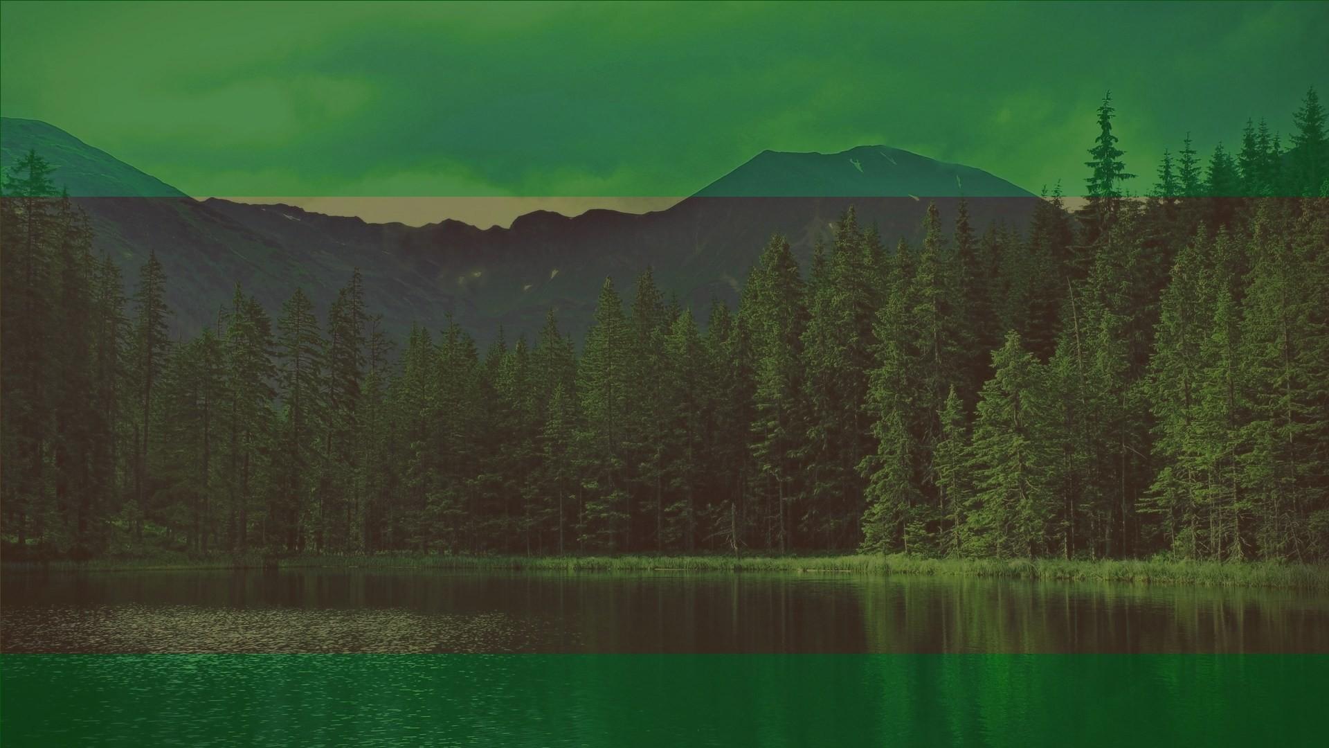 Forest-DarGadgetZ-Xbox-One