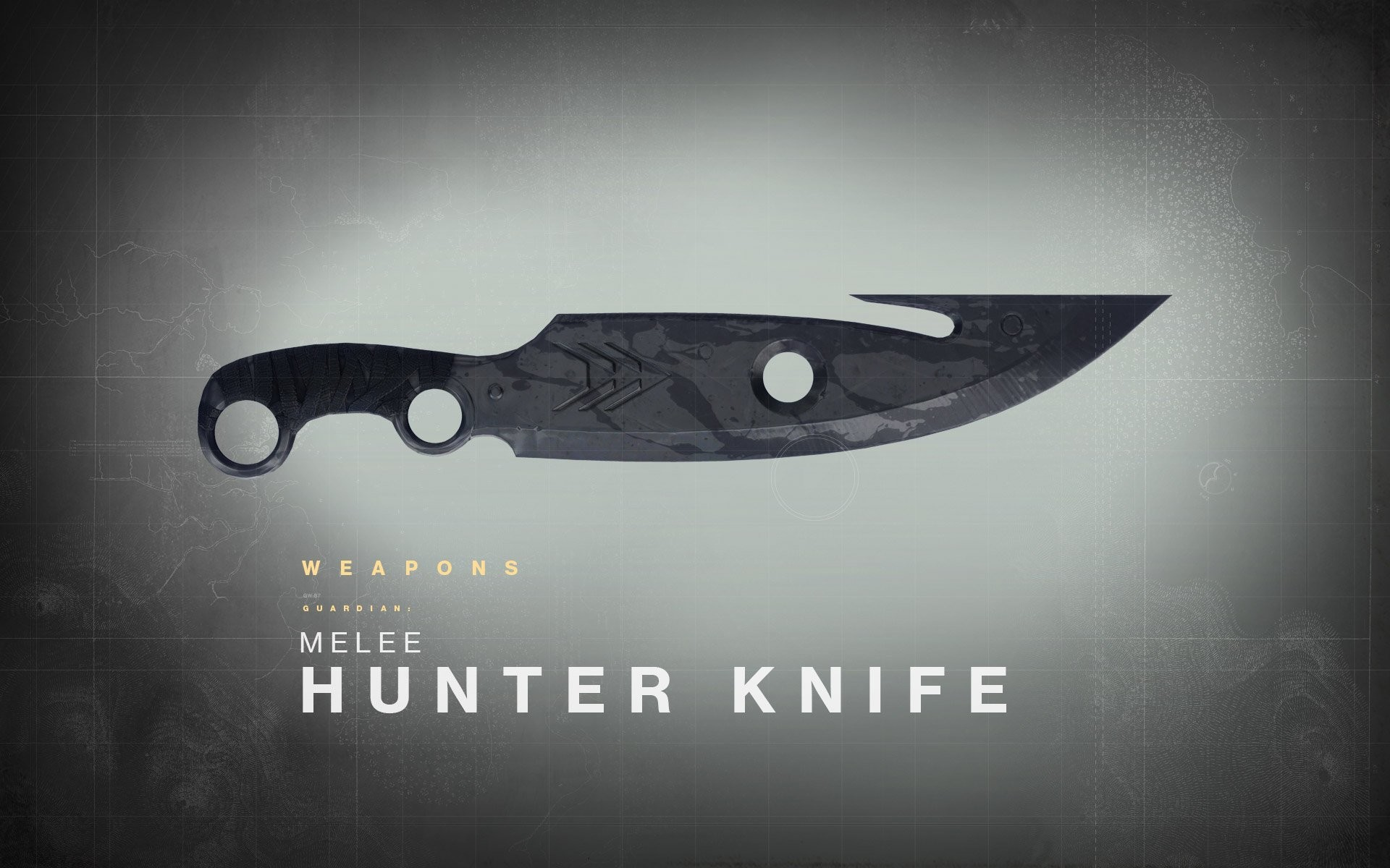 2014 bungie destiny game weapons wallpaper     439791    WallpaperUP