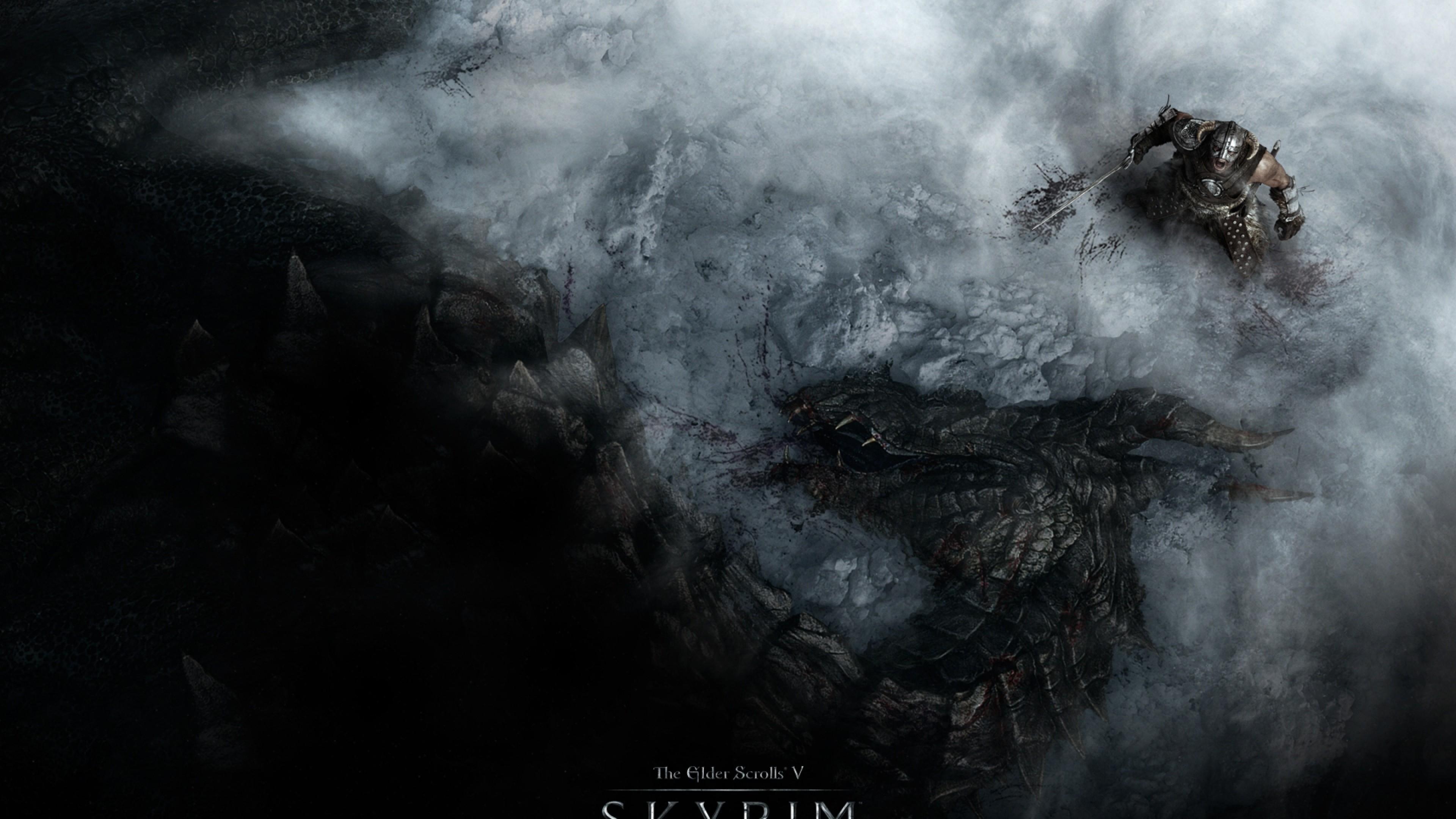 Download Wallpaper The elder scrolls skyrim, Warrior, Dragon .