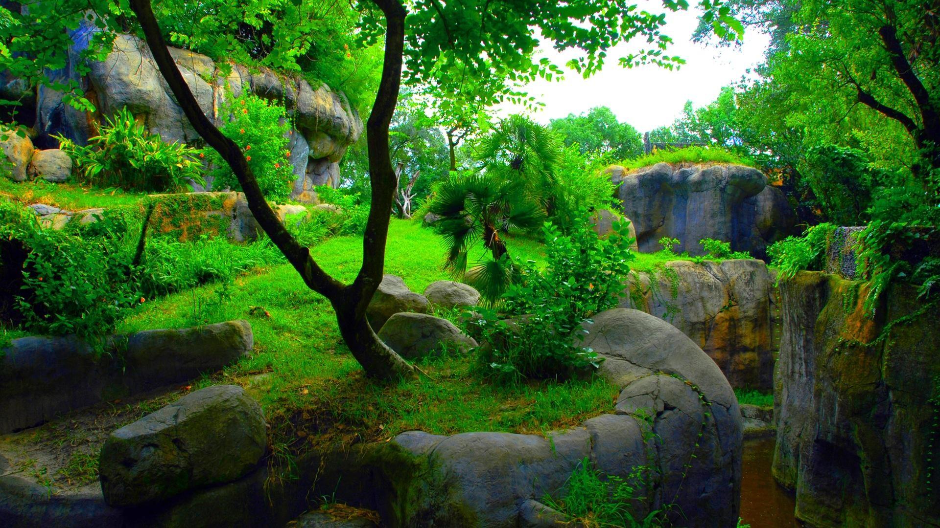 green-abstract-1080p-skyrim-wallpaper– HD Widescreen .
