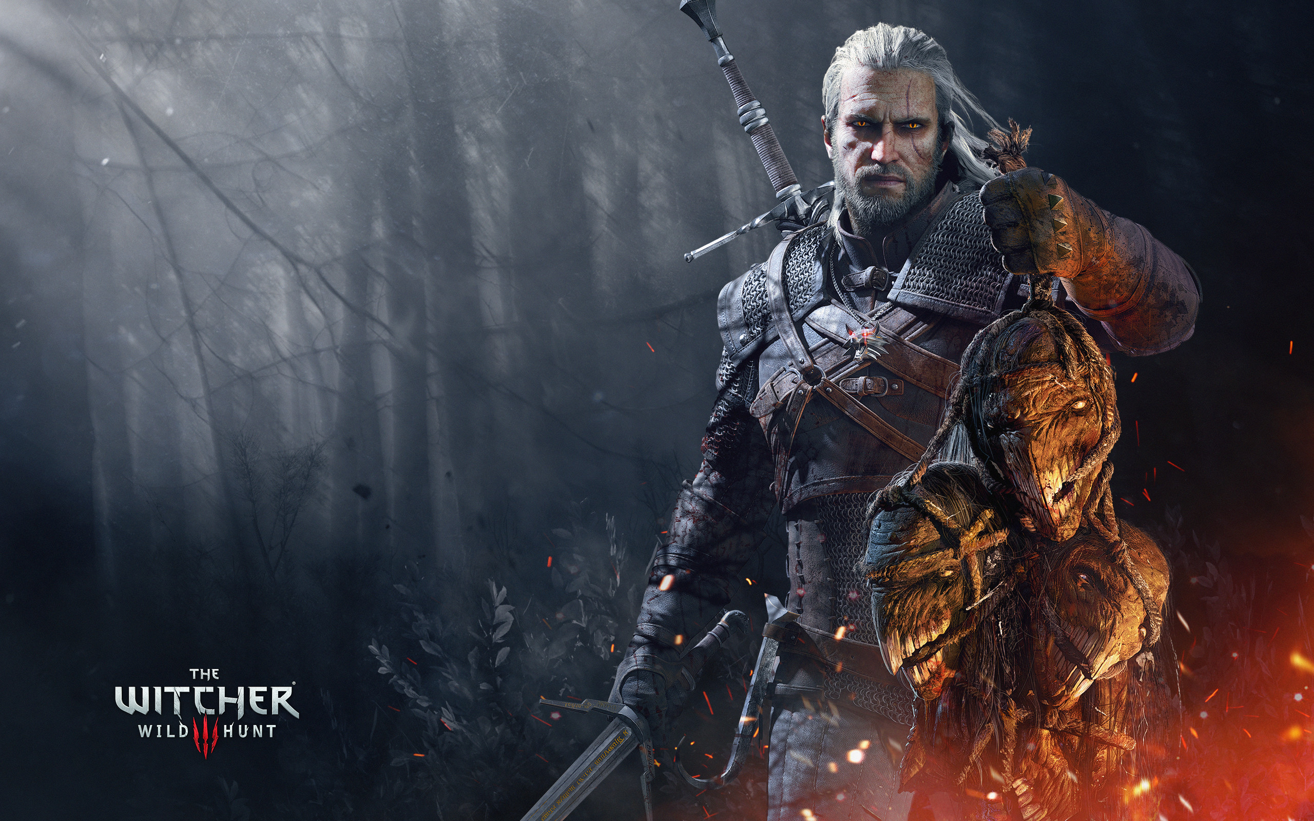 HD Wallpaper | Background ID:667676. Video Game The Witcher …