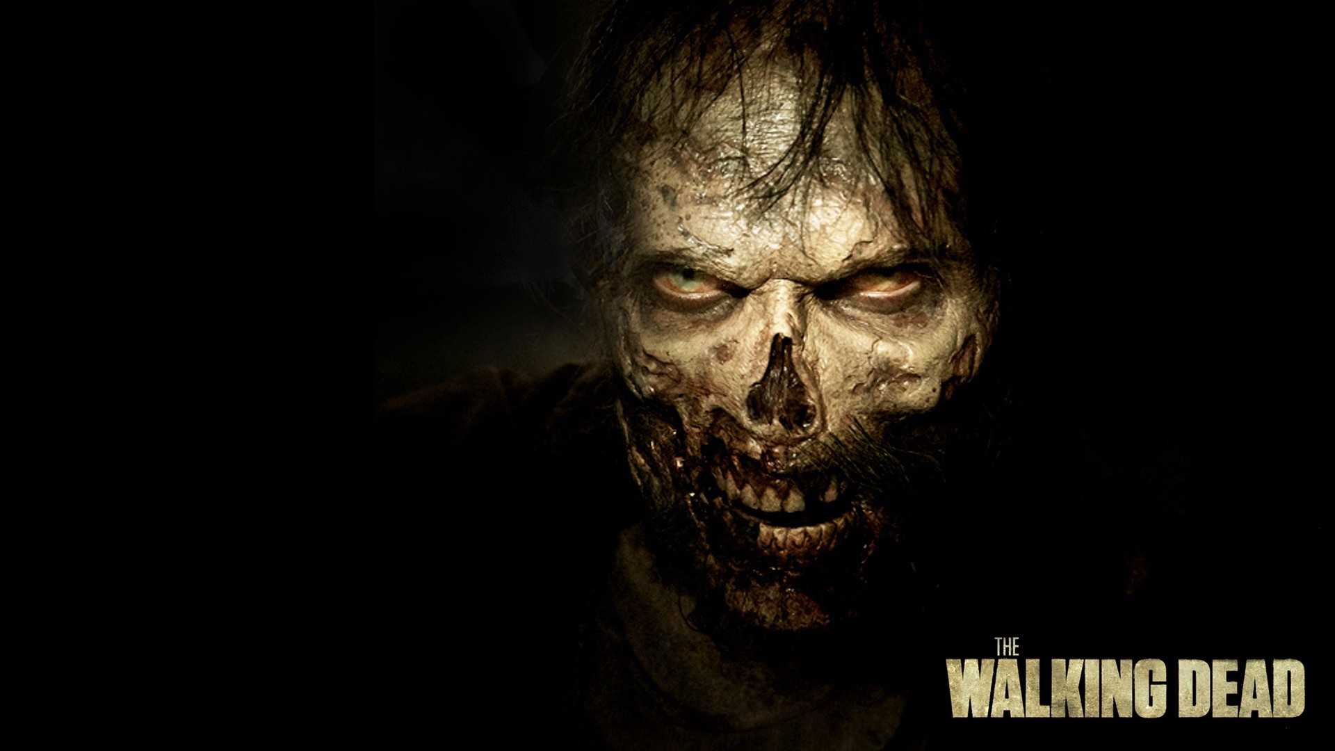 The Walking Dead (Season 5) – Them   Walking Dead Zombie Wallpaper in 1920