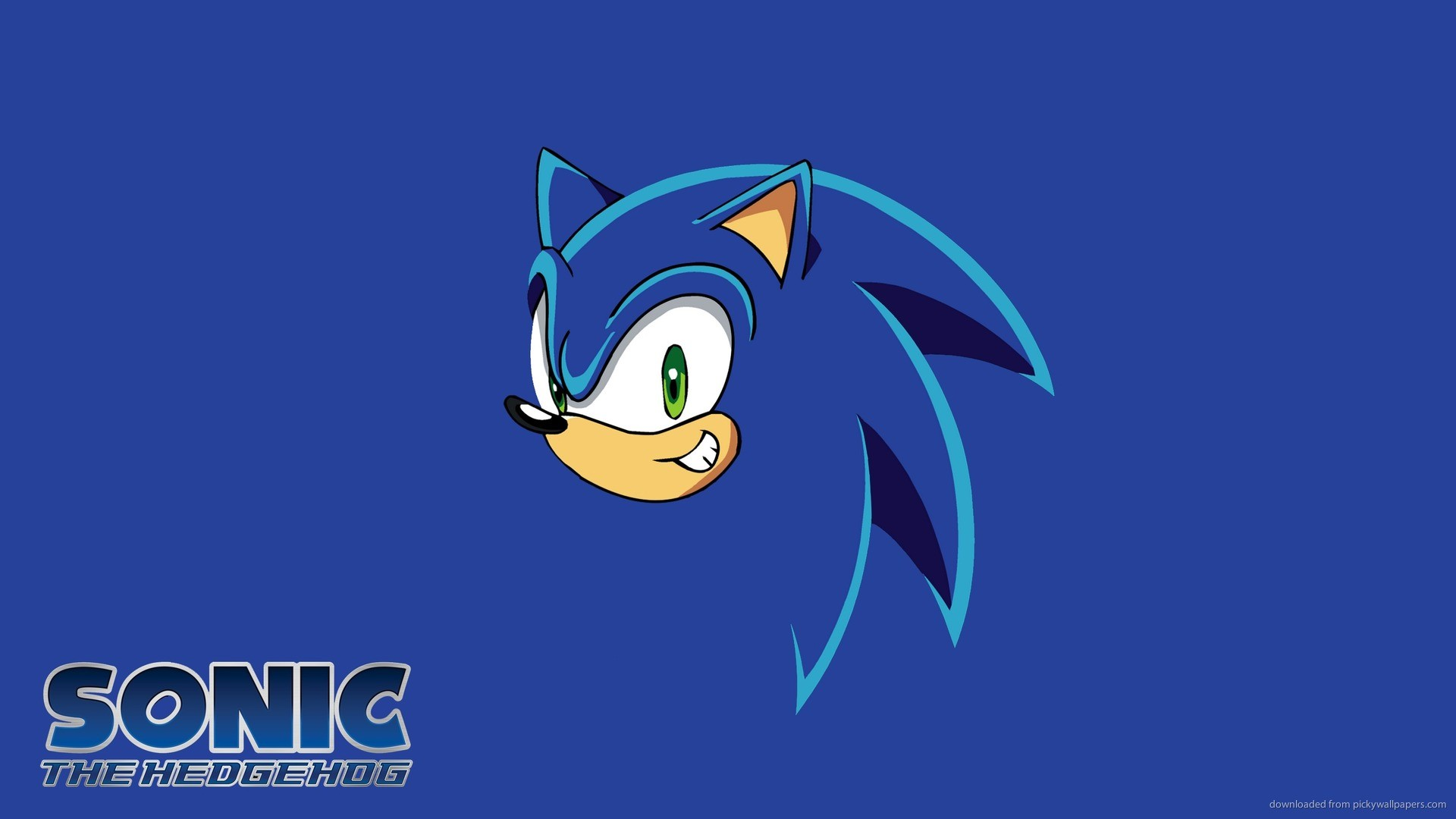 Sonic The Hedgehog Face picture