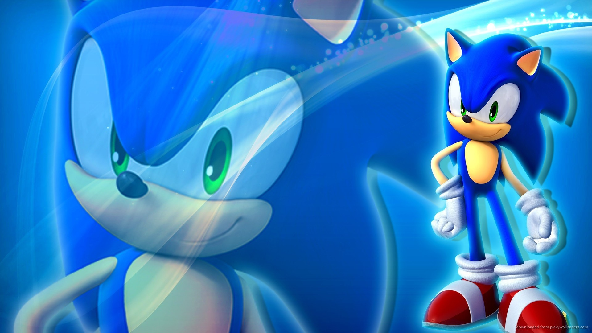 Sonic The Hedgehog Standing picture