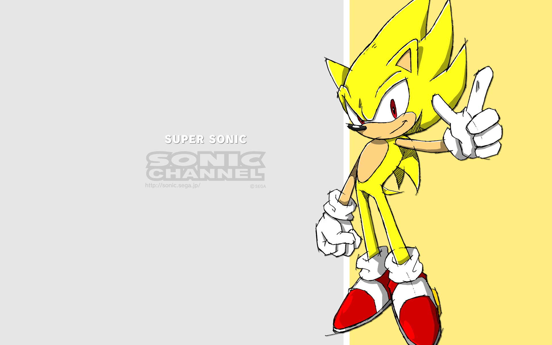 Sonic The Hedgehog Widescreen Wallpaper