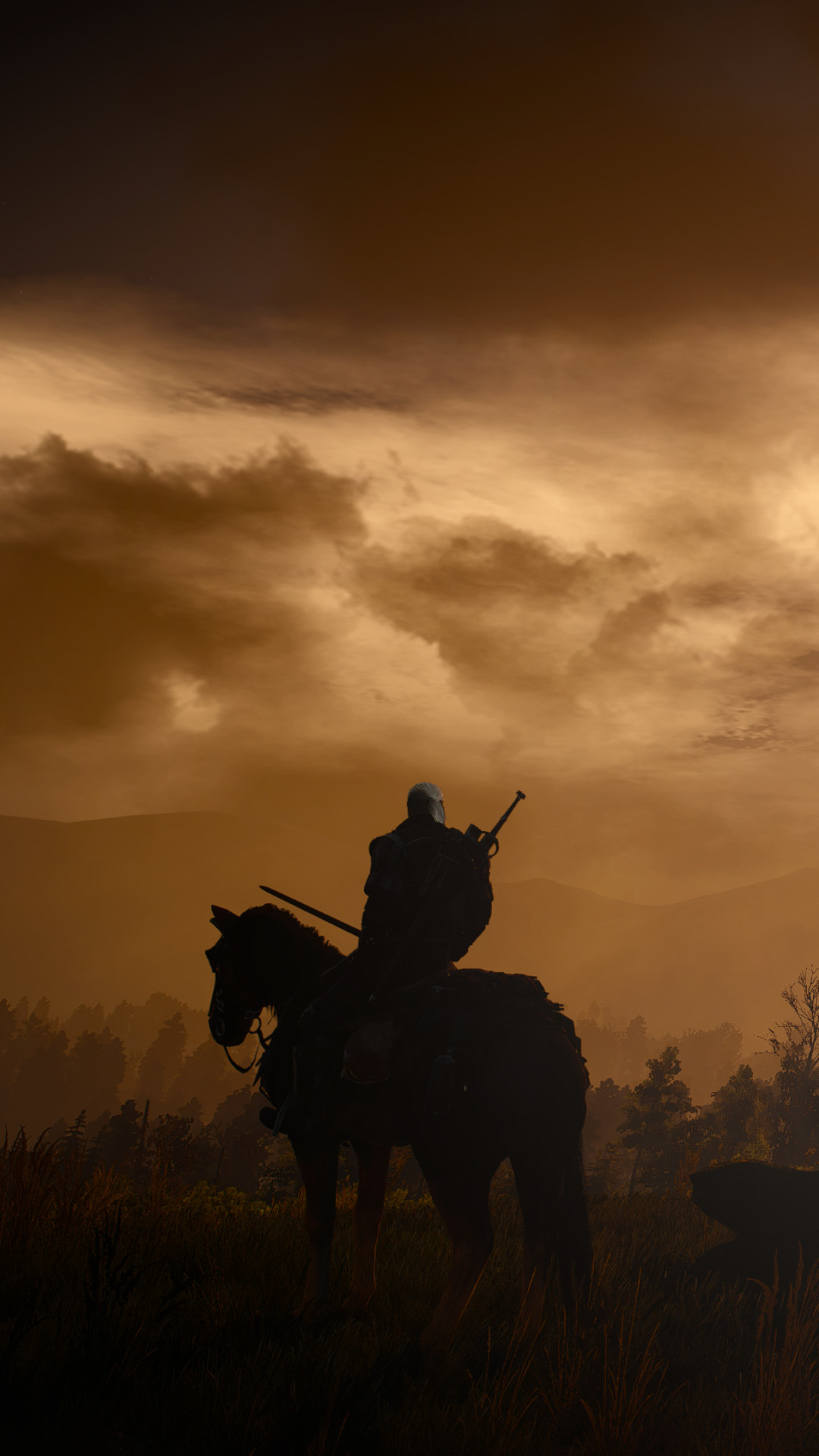 Download this Wallpaper iPhone 6 Plus – Video Game/The Witcher 3: Wild Hunt