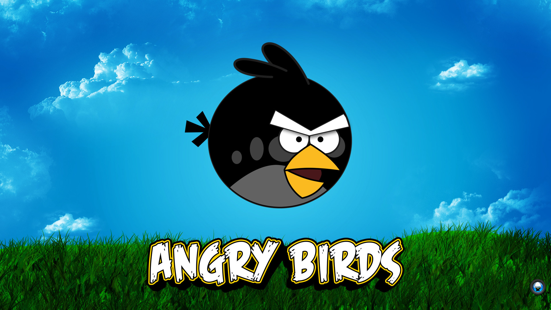 Games Angry Birds Widescreen For Desktop HD Wallpaper Background Picture  Images