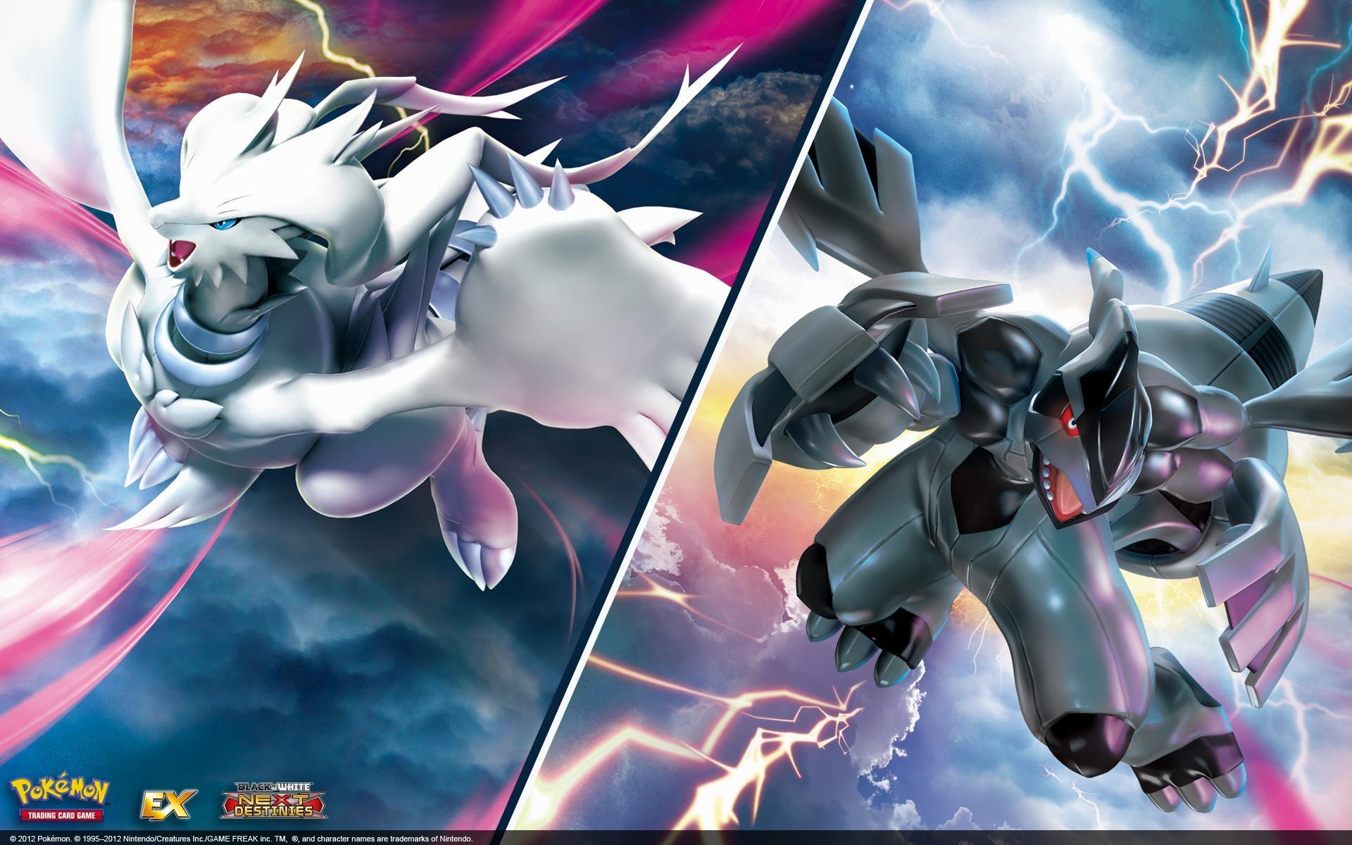 HD-Pokemon-Black-And-White-Picture-Free-1