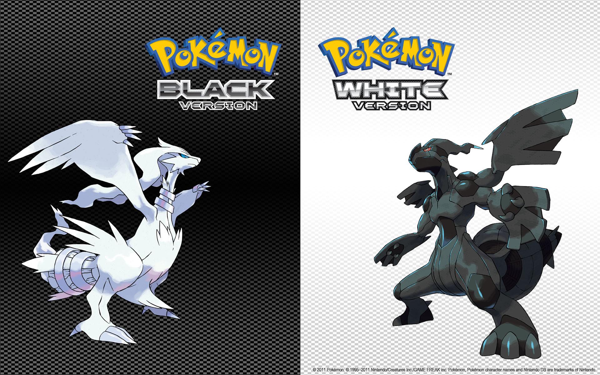 Pokemon Black And White wallpaper – 415421