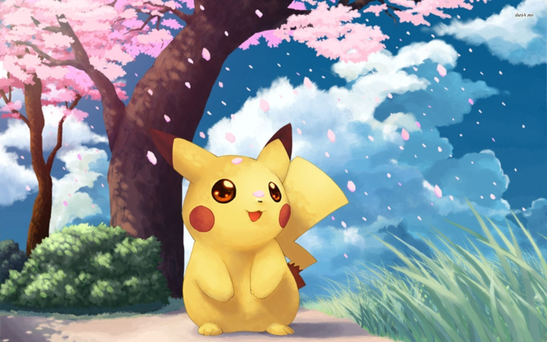 Pictures Of Pokemon Pikachu