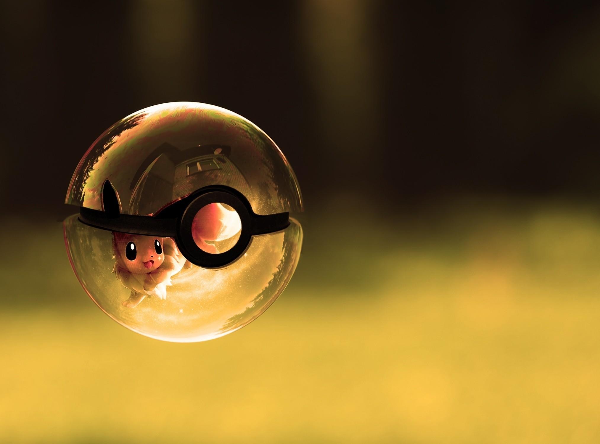 Charizard Dragon Duck Minecraft Pokeball Pokémon · HD Wallpaper |  Background ID:305896