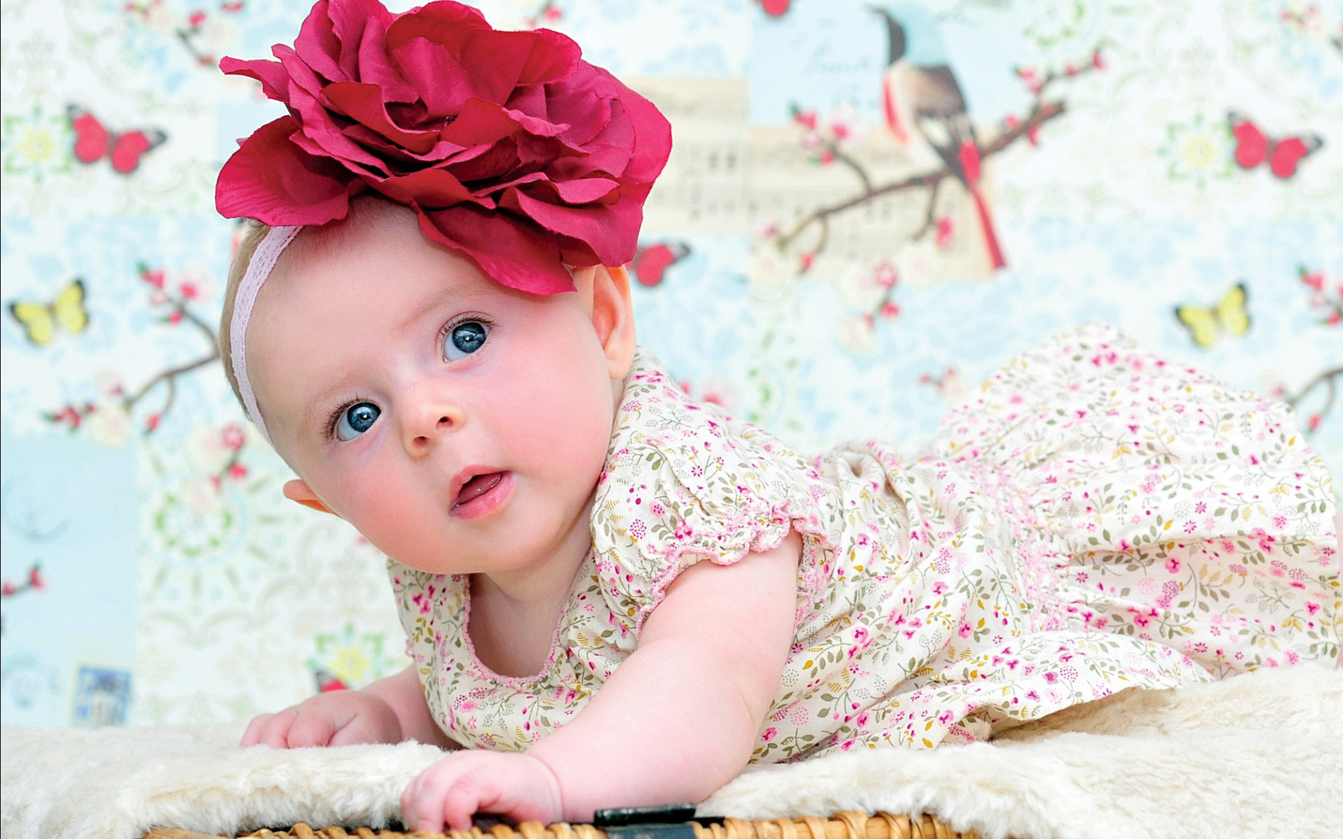 Cute Baby Girl Wallpaper Cool Pictures #6om8053a – Yoanu