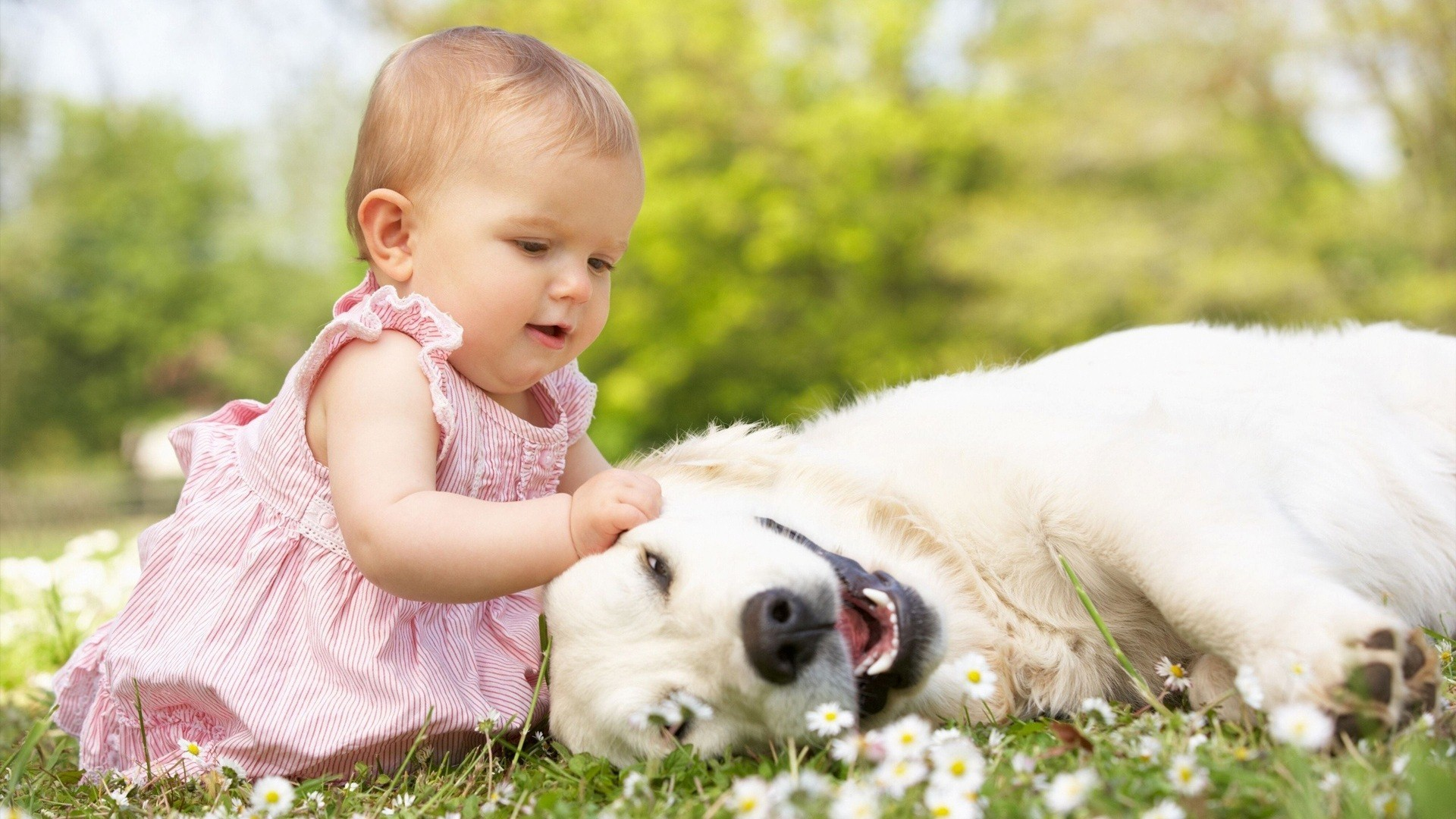 Cute Baby Girl Wallpapers | Free Download HD Beautiful Desktop Images