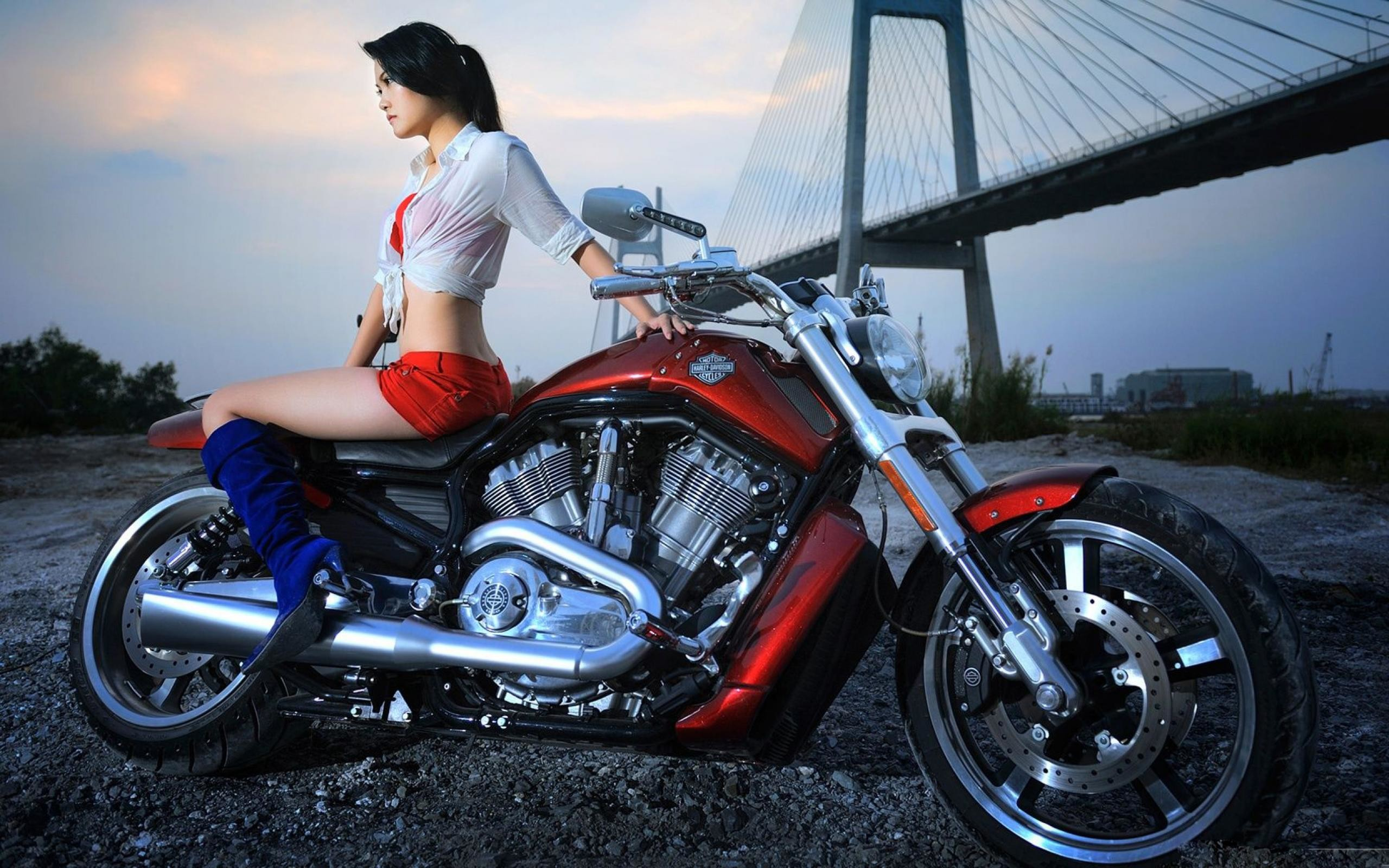 Hottest Harley Girls   … Download Wallpapers Sexy Girls Music Harley  Davidson Motorcycles Best
