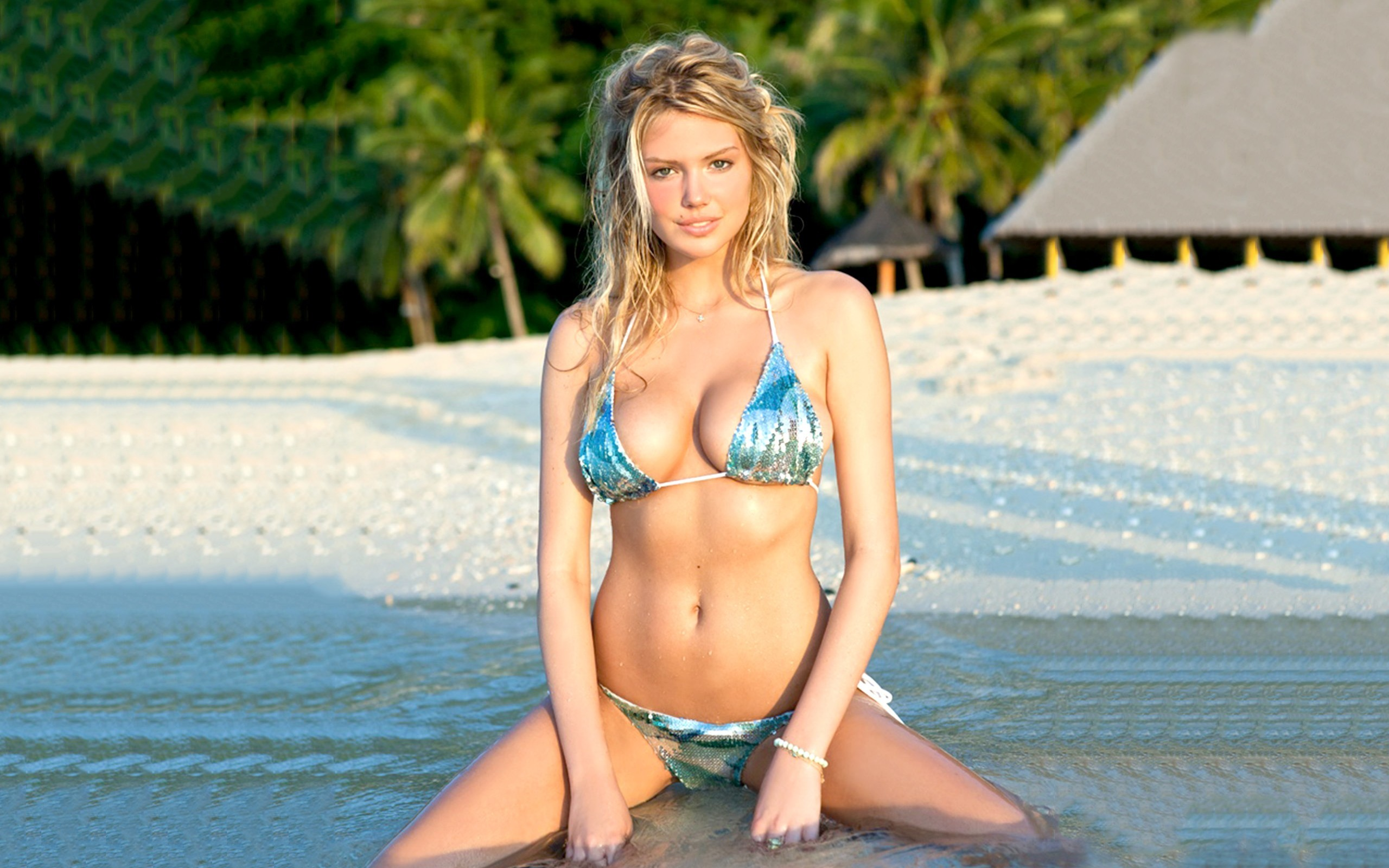 Explore Celebrity Wallpapers, Kate Upton, and more!
