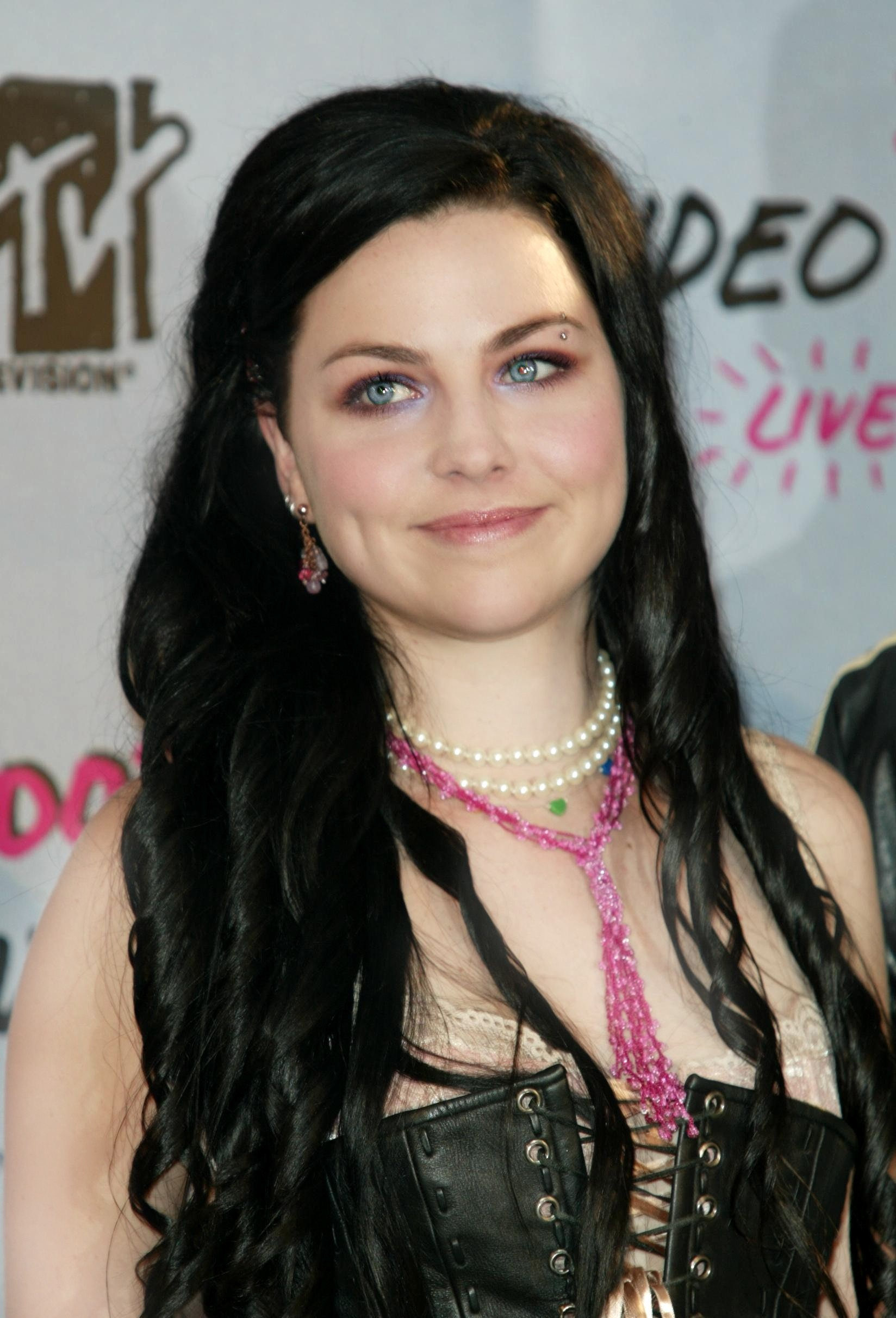 dooodle images Amy Lee HD wallpaper and background photos