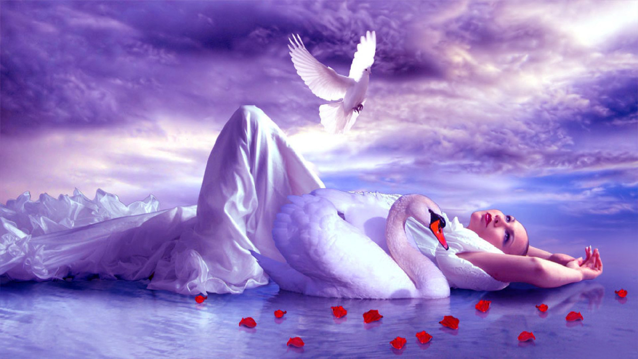 Girl Lake Accompaniment Of A Swan And Golub Sky With White Clouds Red Rose  Sheet Fantasy Hd Wallpaper : Wallpapers13.com