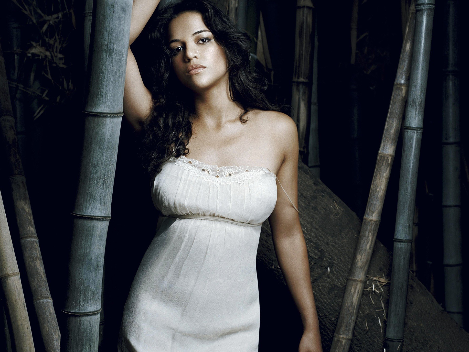 Michelle Rodriguez 2014. Michelle Rodriguez Wallpaper HD1