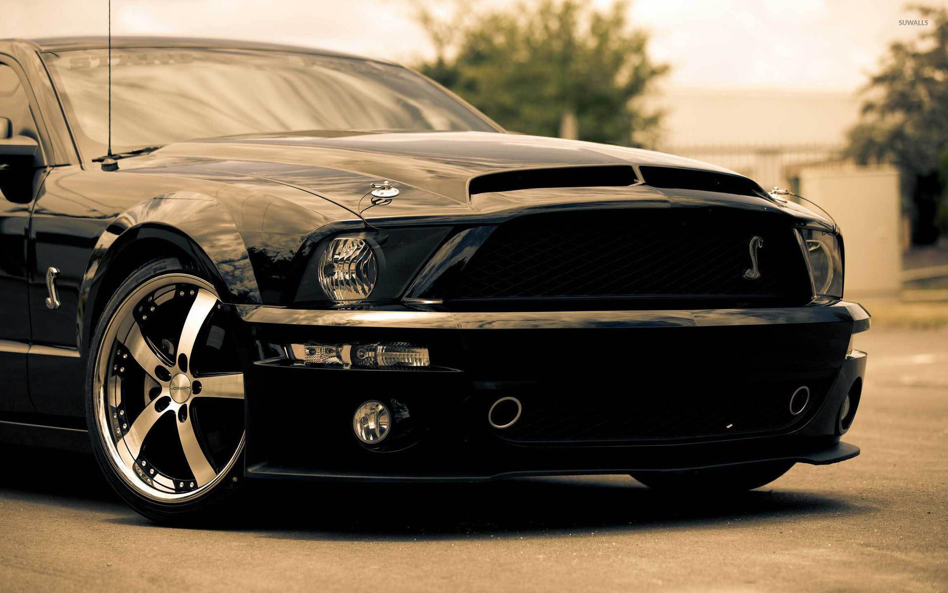 Shelby Mustang wallpaper jpg